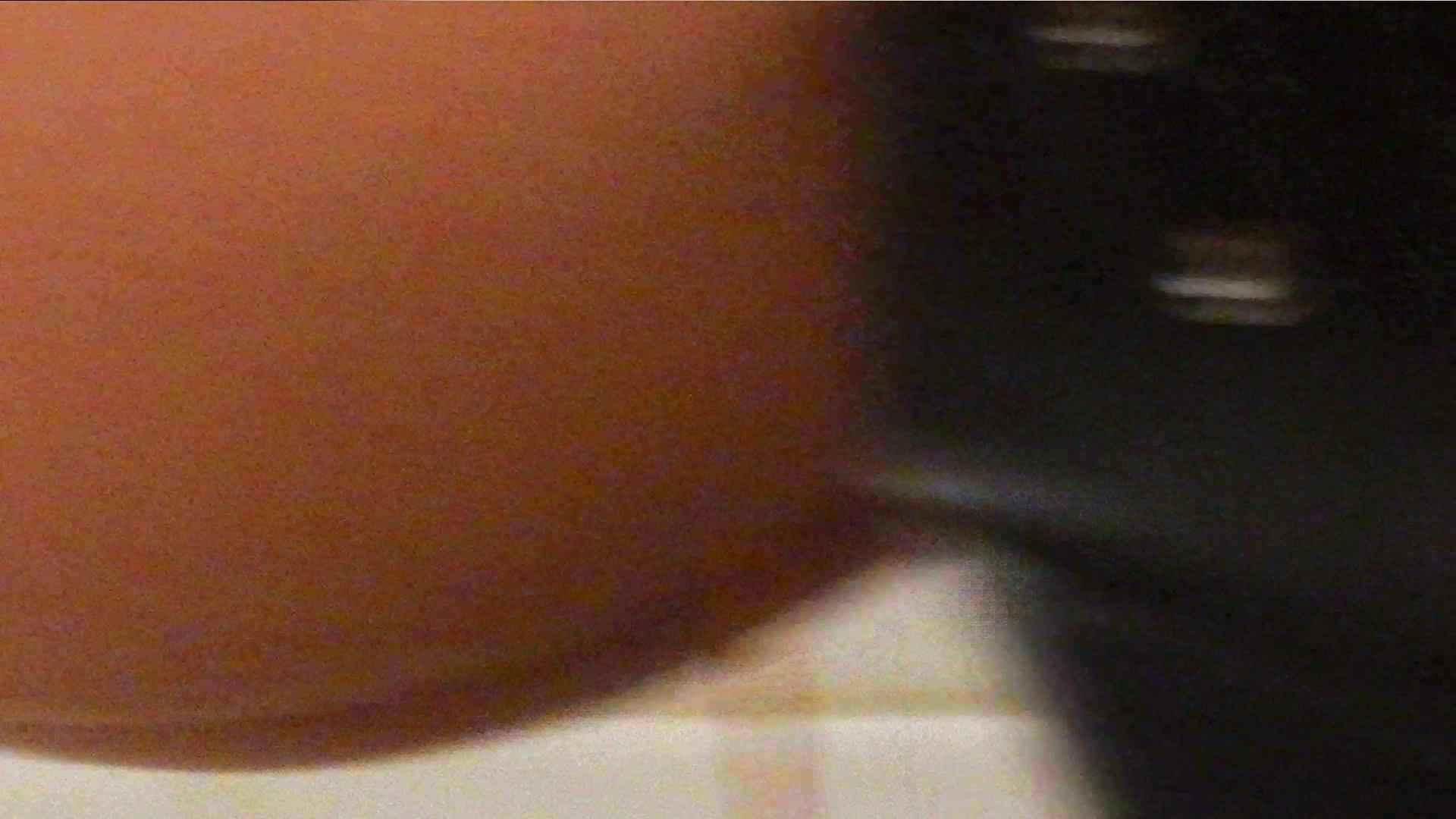 洗寿観音さんの 化粧室は四面楚歌Nol.4 細身  111PIX 14