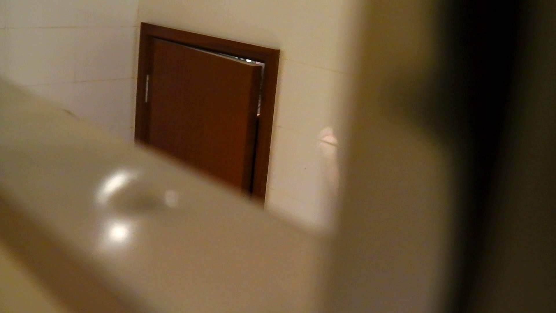 洗寿観音さんの 化粧室は四面楚歌Nol.4 細身  111PIX 36