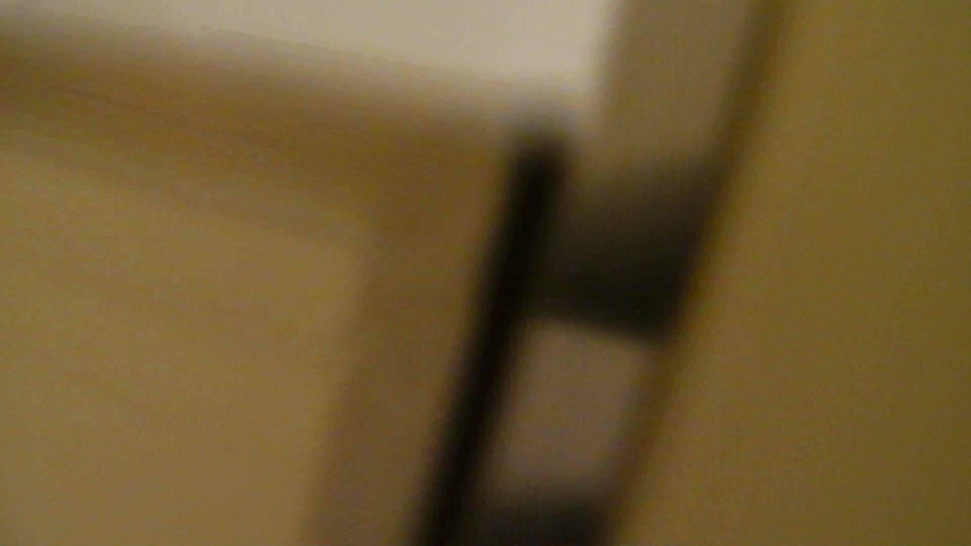 洗寿観音さんの 化粧室は四面楚歌Nol.4 細身  111PIX 37