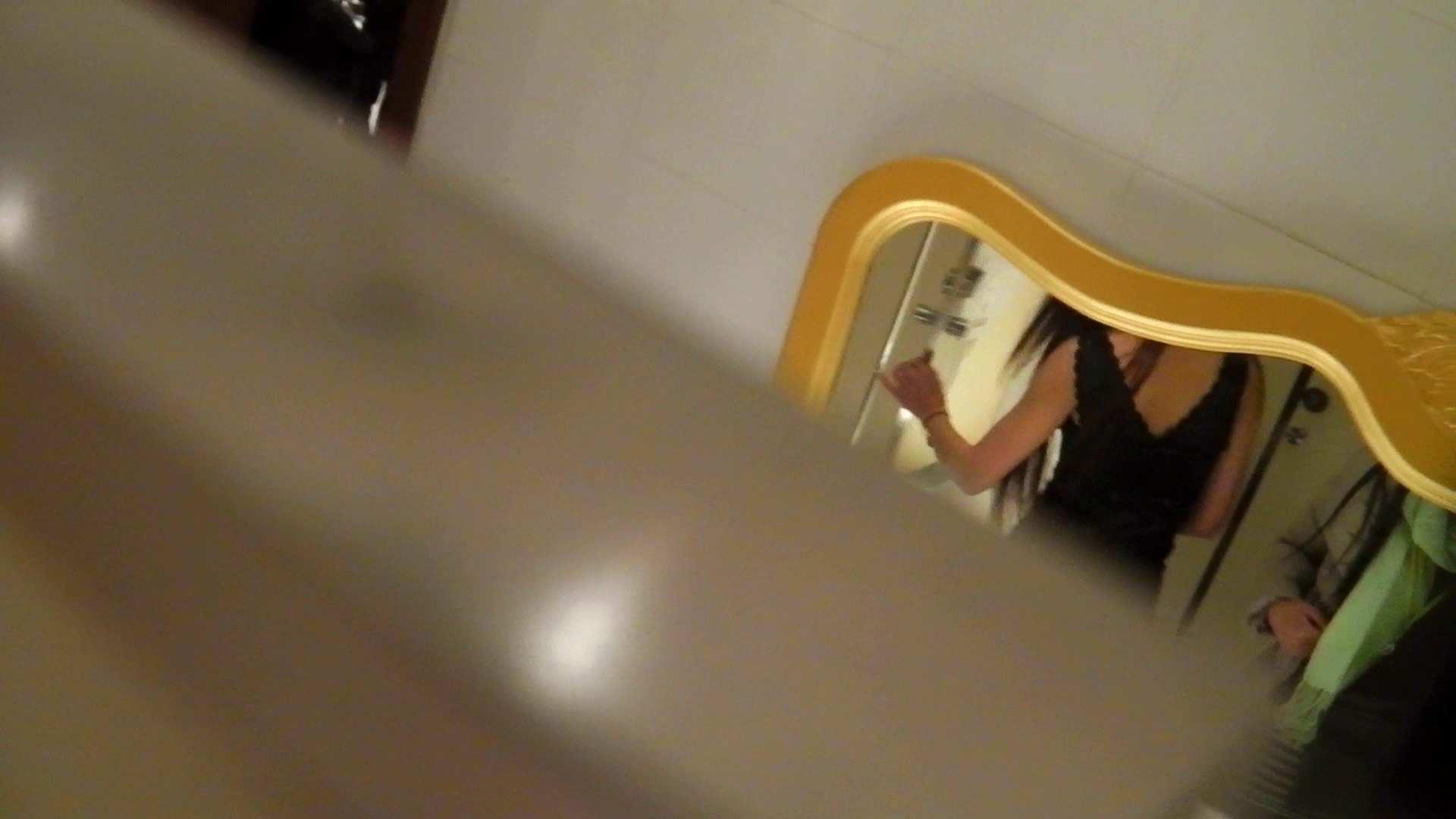 洗寿観音さんの 化粧室は四面楚歌Nol.4 細身  111PIX 49
