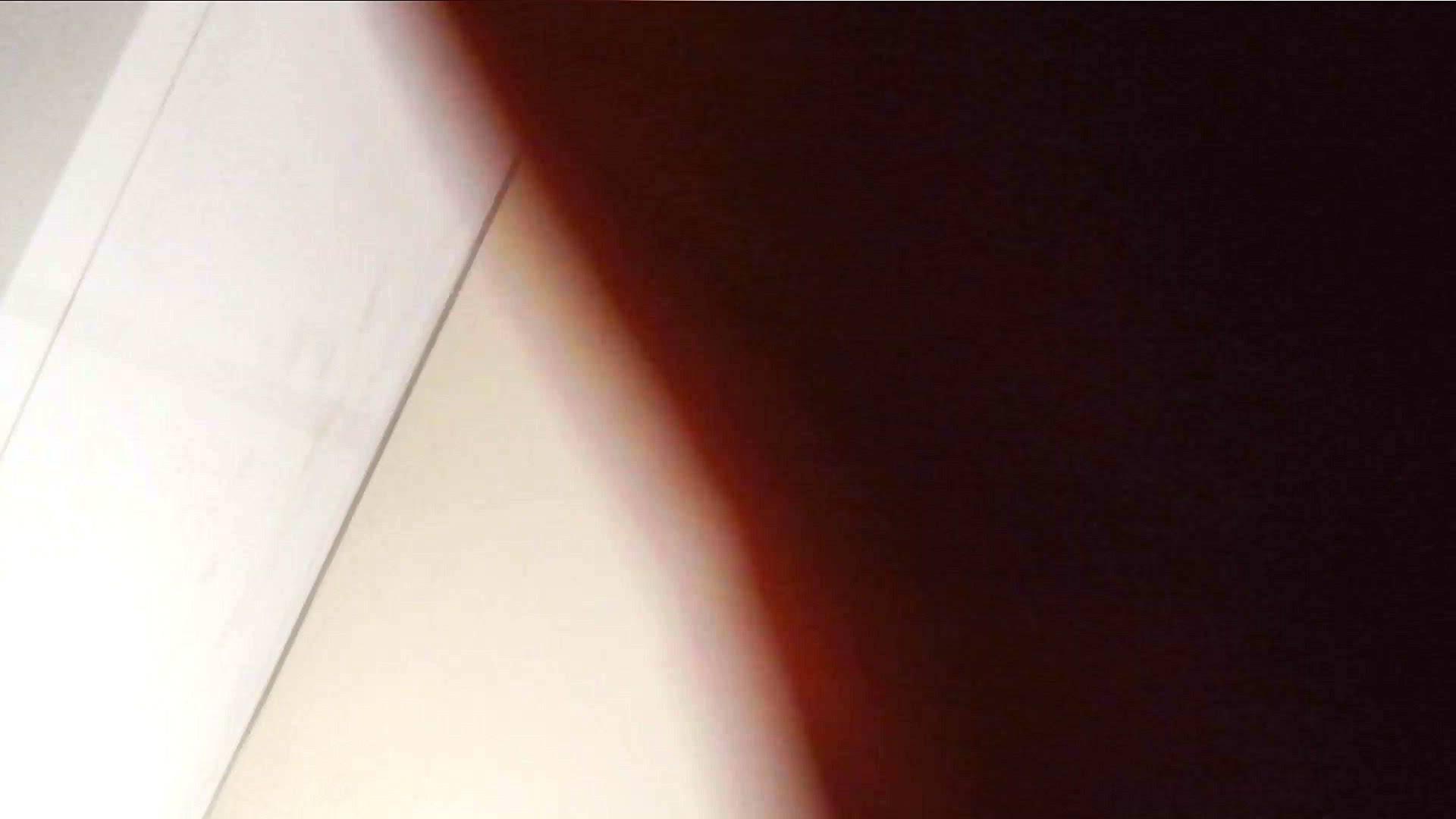 洗寿観音さんの 化粧室は四面楚歌Nol.4 細身  111PIX 52
