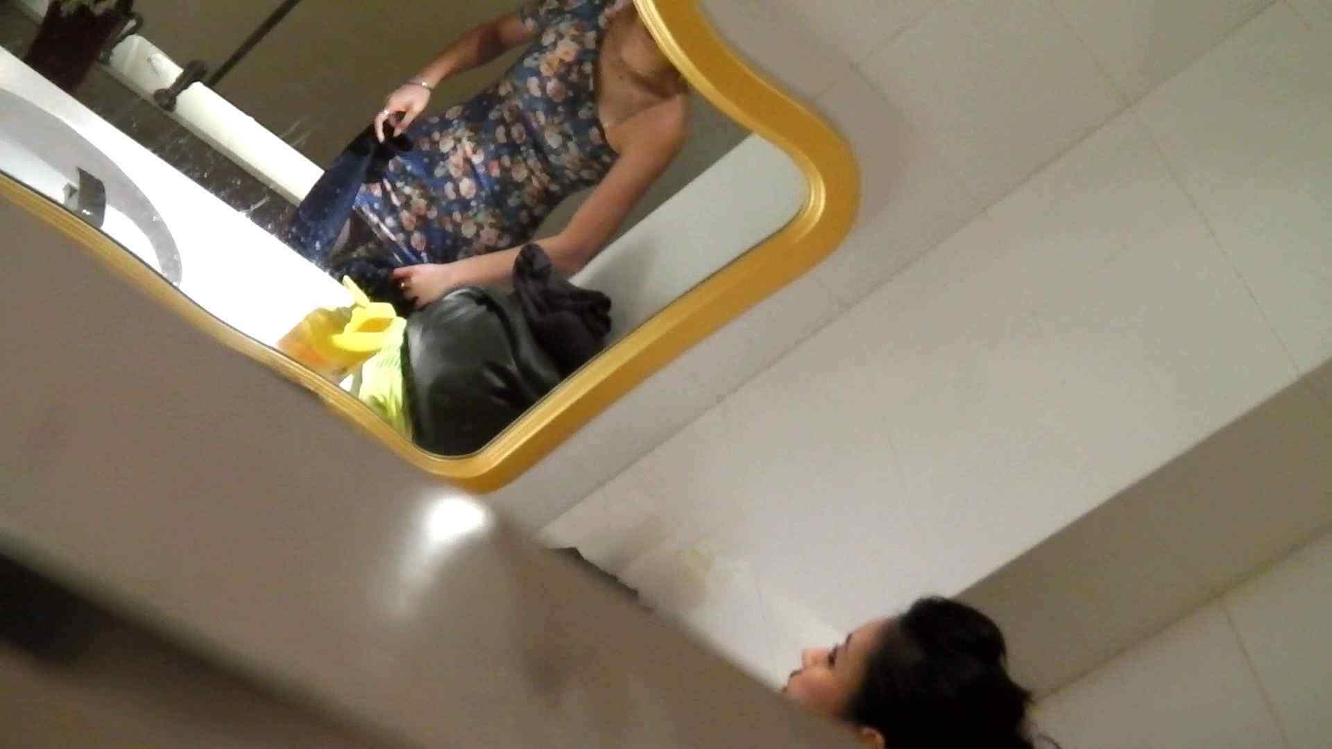 洗寿観音さんの 化粧室は四面楚歌Nol.4 細身  111PIX 62