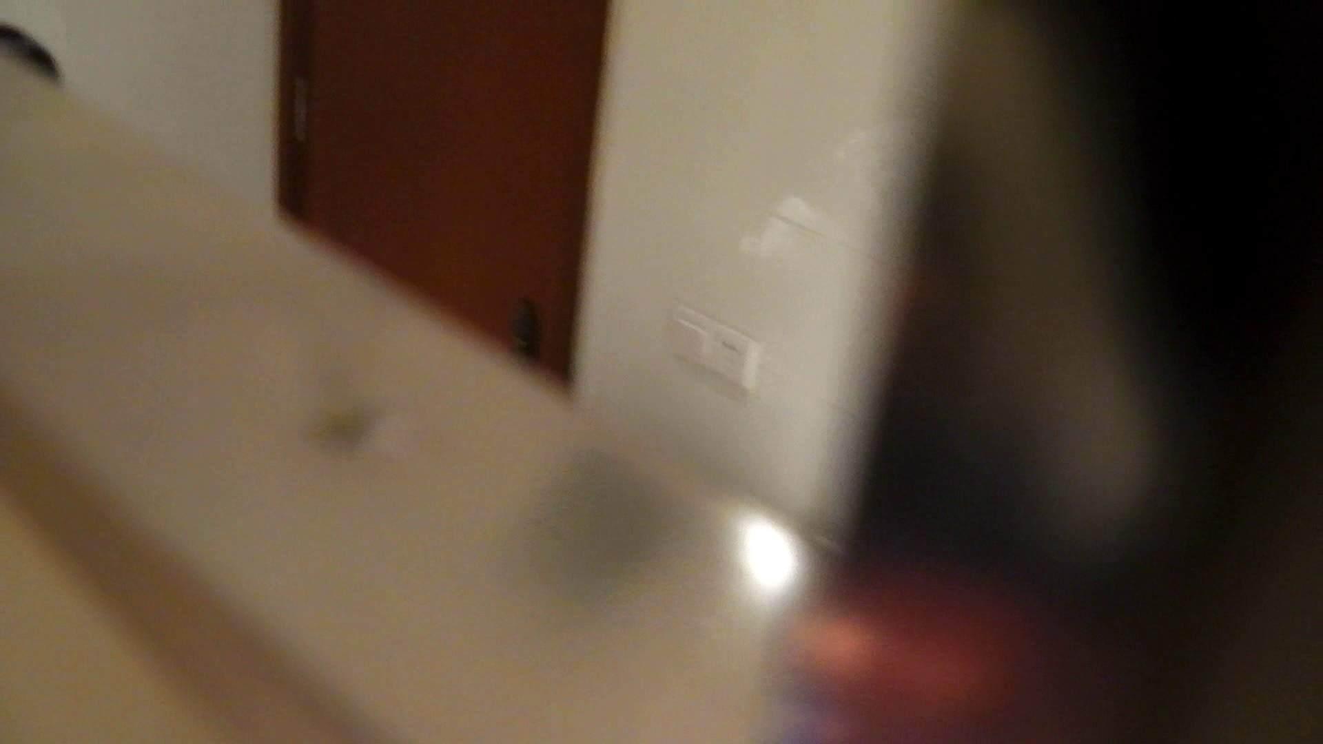 洗寿観音さんの 化粧室は四面楚歌Nol.4 細身  111PIX 66