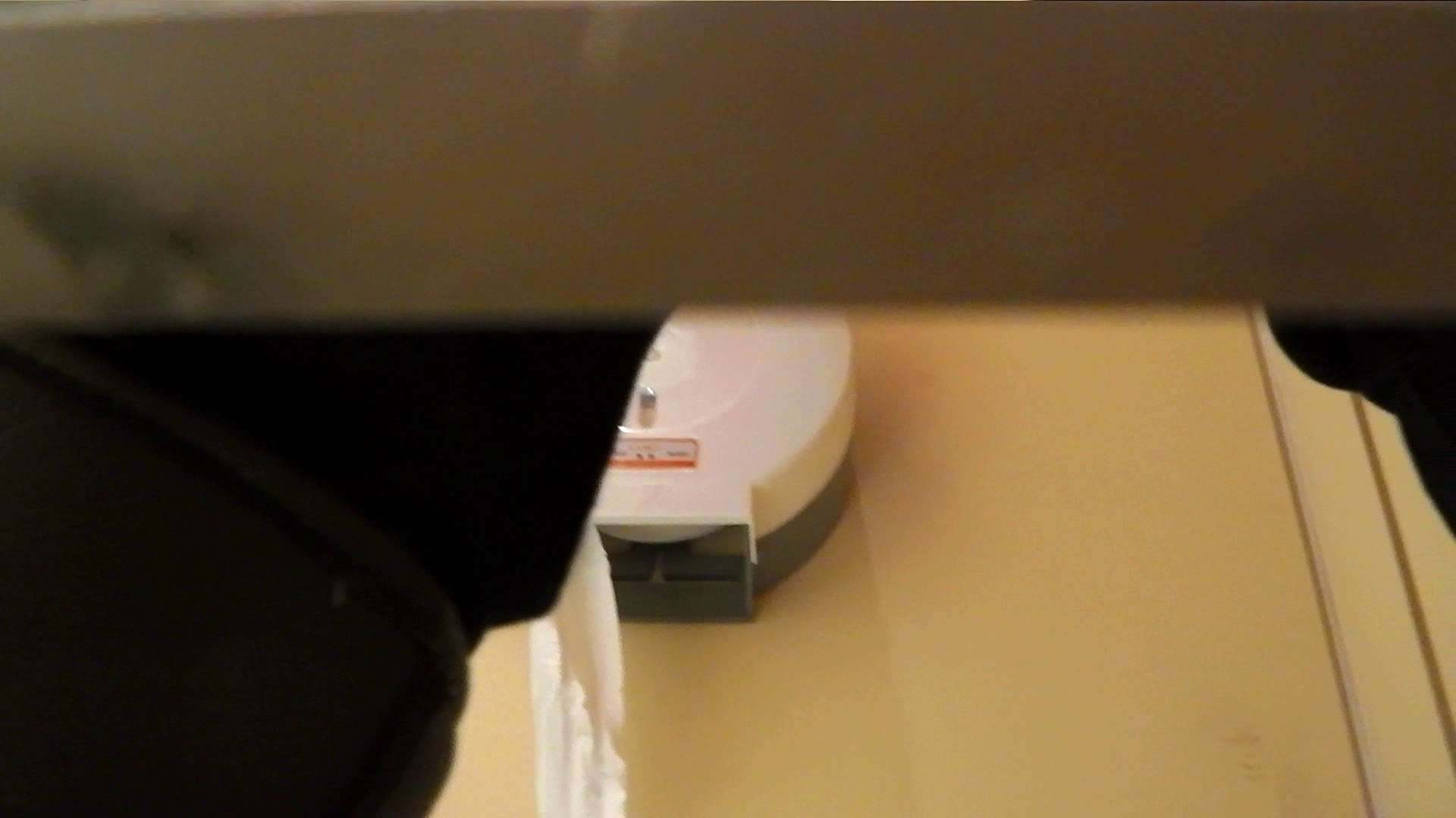 洗寿観音さんの 化粧室は四面楚歌Nol.4 細身  111PIX 73