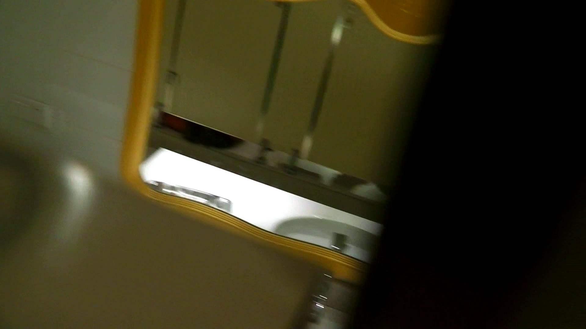 洗寿観音さんの 化粧室は四面楚歌Nol.4 細身  111PIX 100