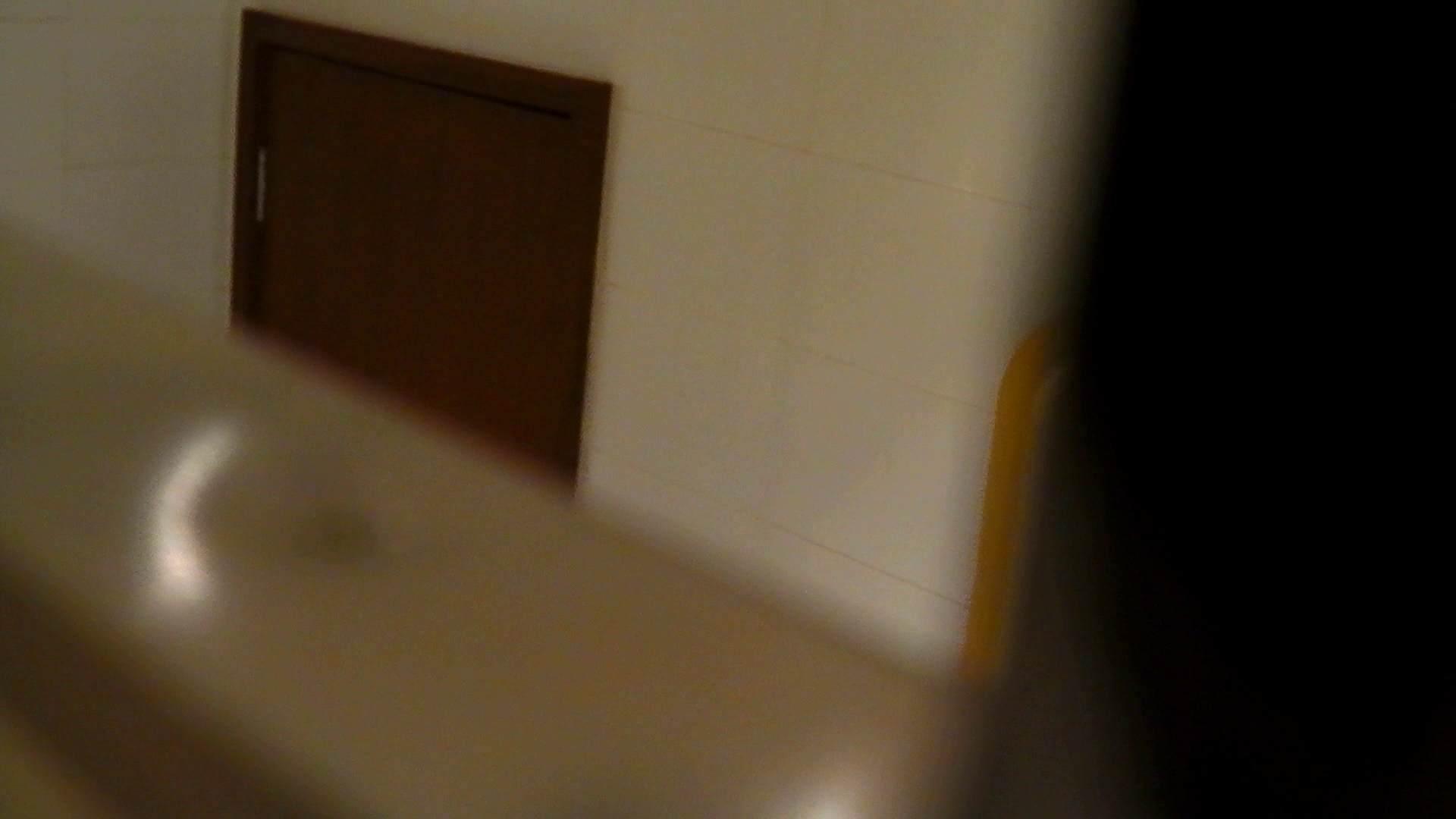 洗寿観音さんの 化粧室は四面楚歌Nol.4 細身  111PIX 101