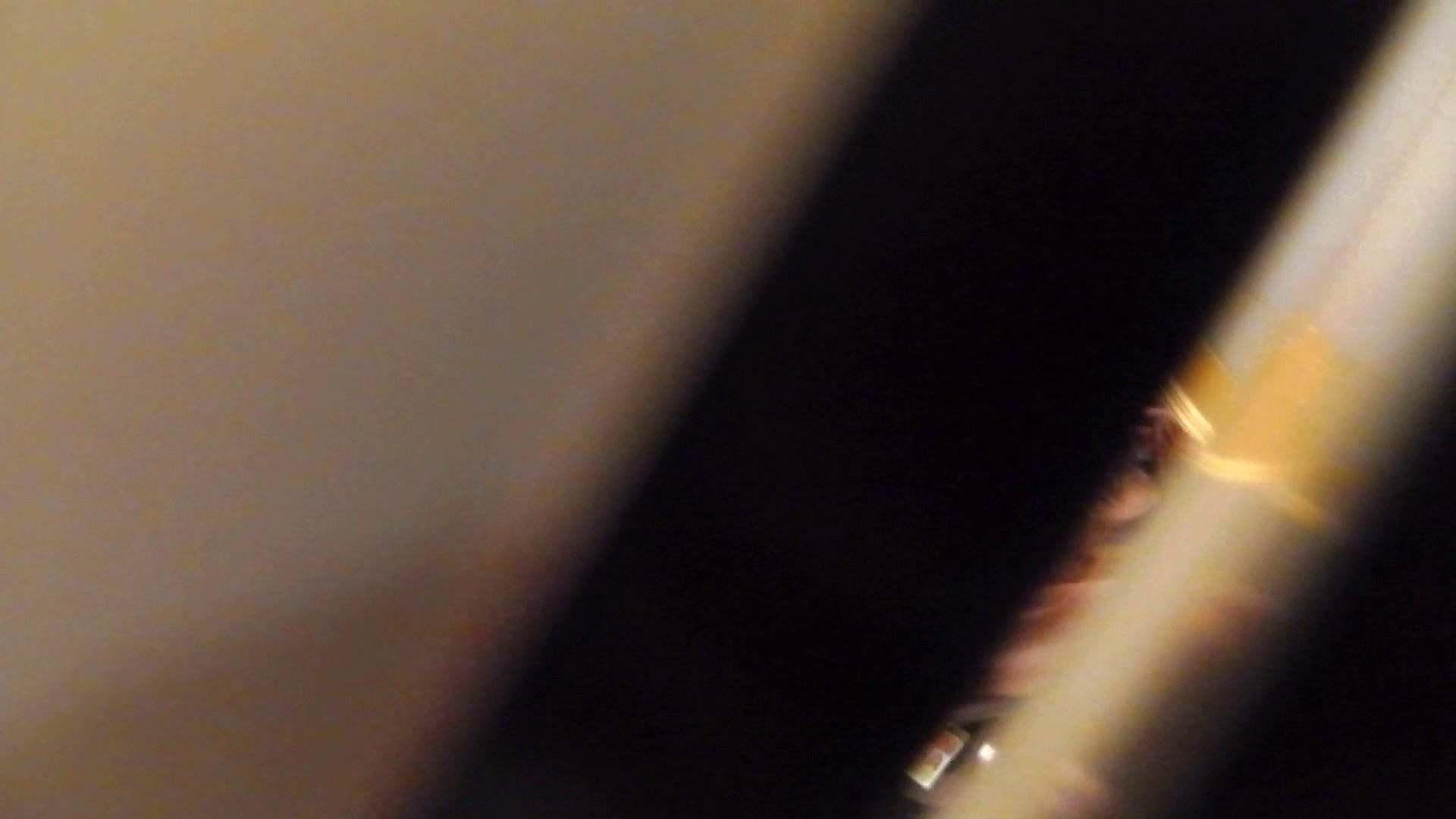 洗寿観音さんの 化粧室は四面楚歌Nol.4 細身  111PIX 103