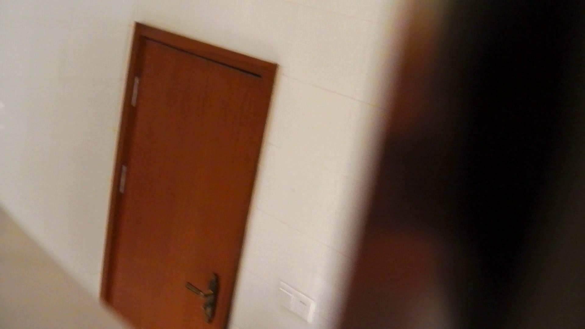 洗寿観音さんの 化粧室は四面楚歌Nol.4 細身  111PIX 104