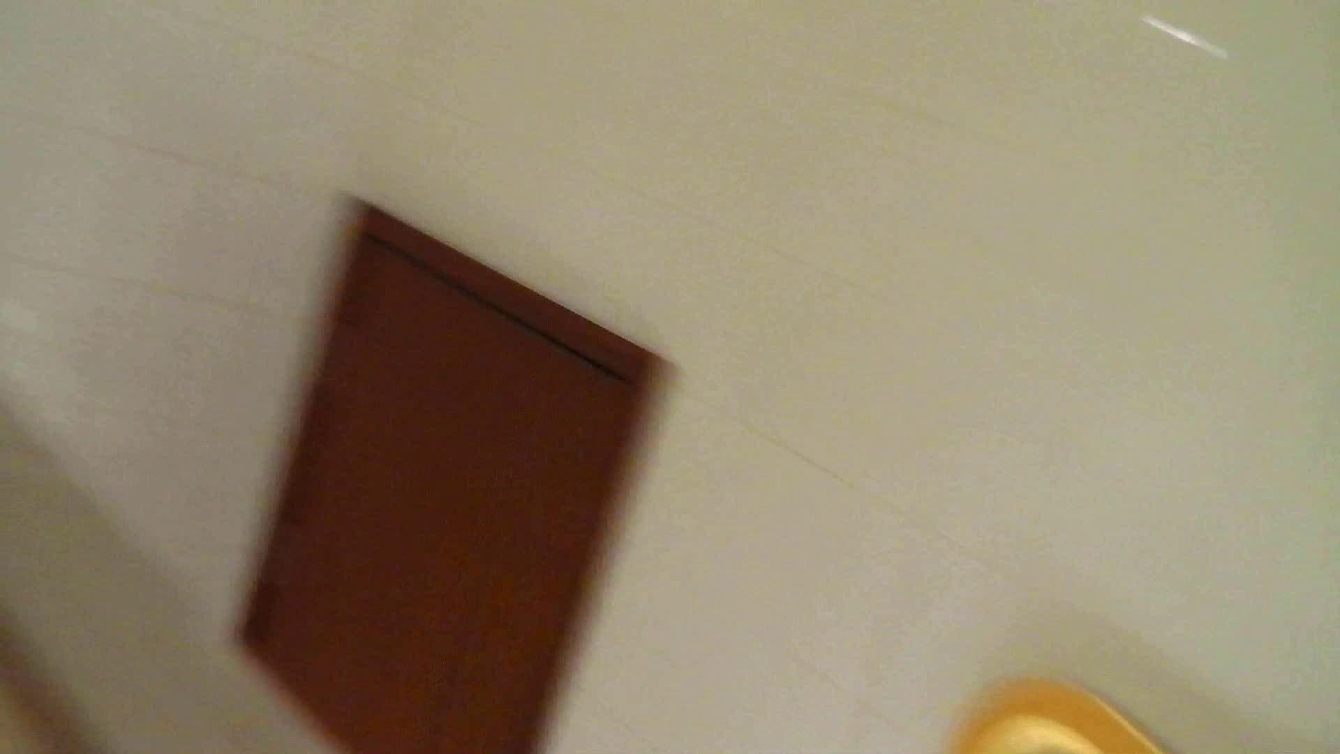 洗寿観音さんの 化粧室は四面楚歌Nol.4 細身  111PIX 106