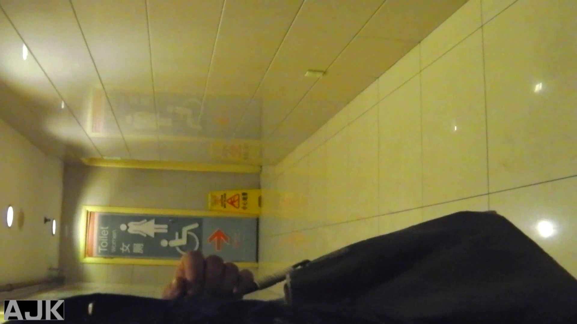 隣国上階級エリアの令嬢たちが集うデパートお手洗い Vol.03 おまんこ  104PIX 31