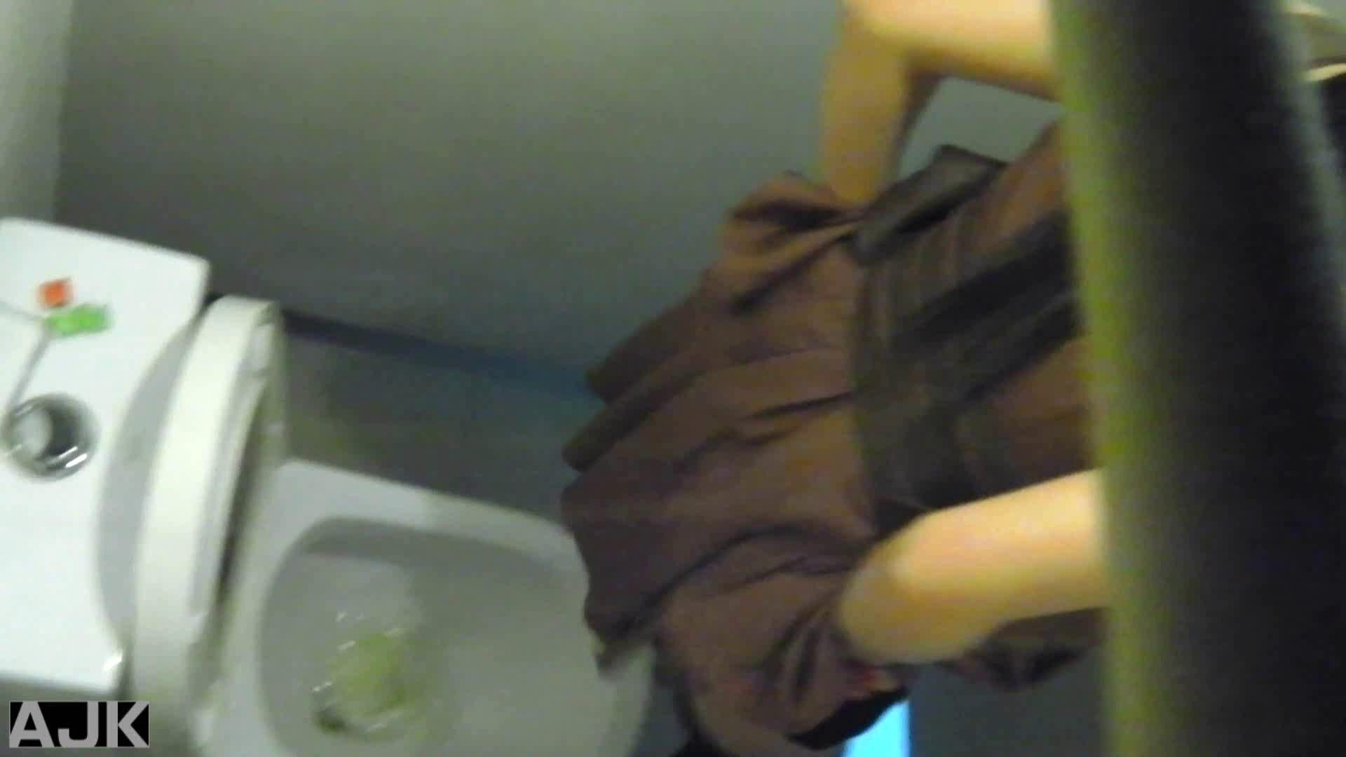 隣国上階級エリアの令嬢たちが集うデパートお手洗い Vol.13 便所  85PIX 18