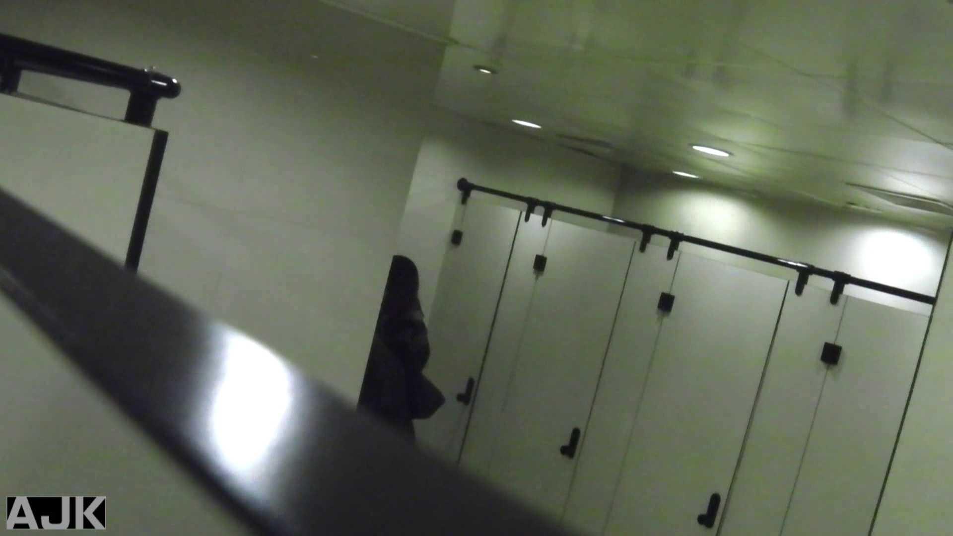 隣国上階級エリアの令嬢たちが集うデパートお手洗い Vol.14 お嬢様  78PIX 8