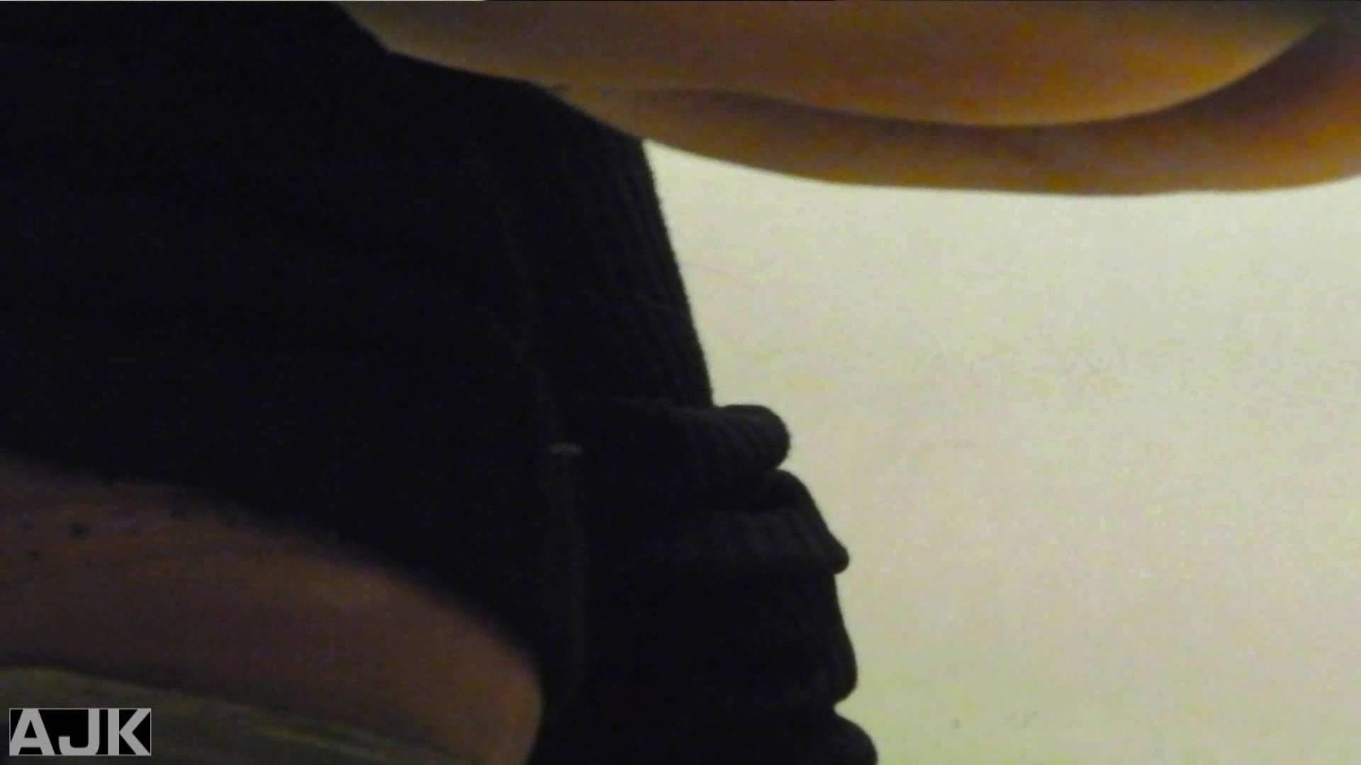隣国上階級エリアの令嬢たちが集うデパートお手洗い Vol.14 お嬢様  78PIX 77