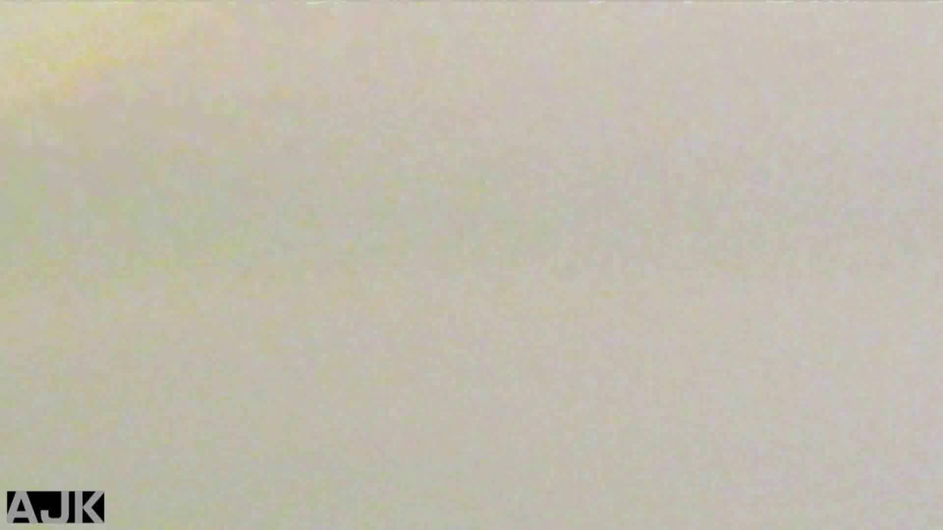 隣国上階級エリアの令嬢たちが集うデパートお手洗い Vol.19 オマンコ  89PIX 34