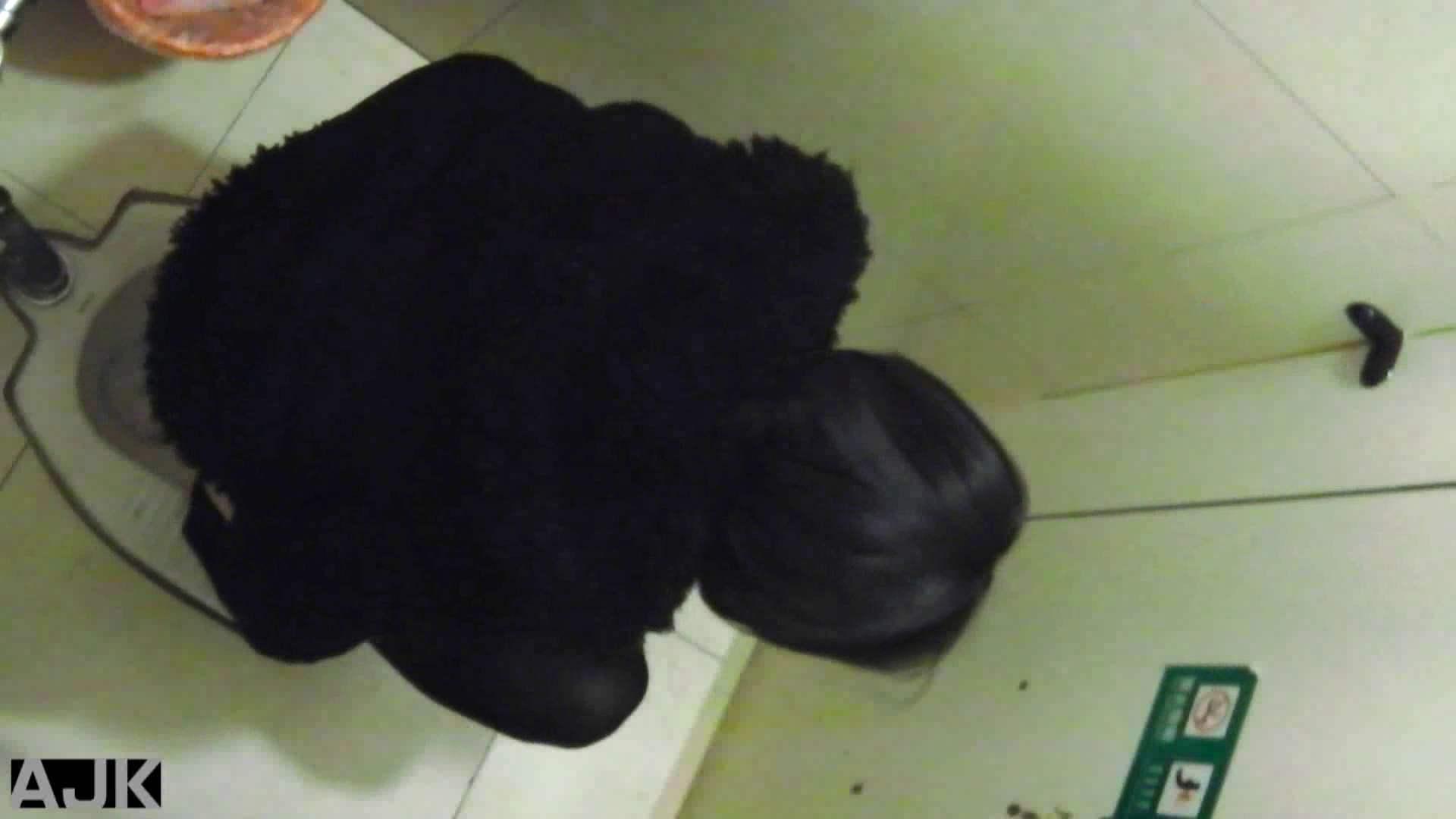 隣国上階級エリアの令嬢たちが集うデパートお手洗い Vol.19 オマンコ  89PIX 36