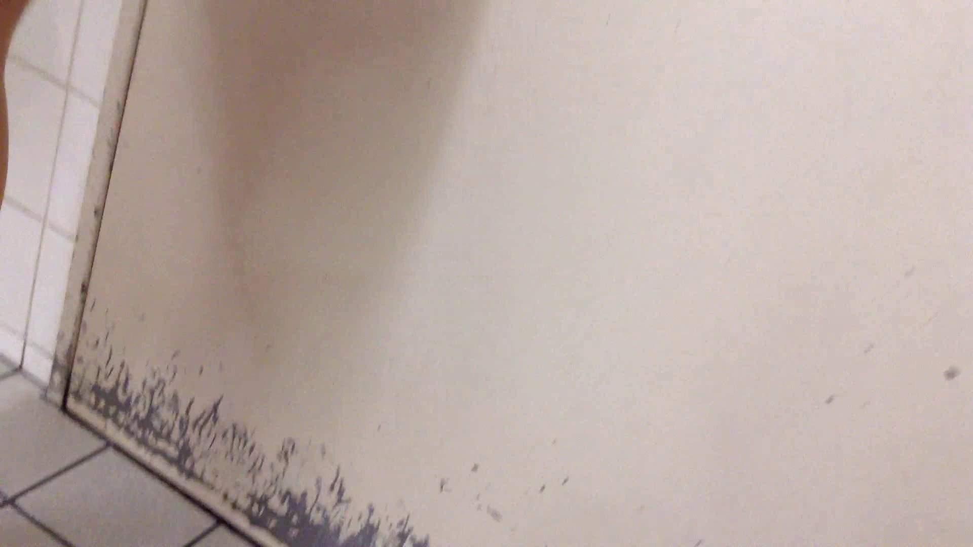女子洗面所行列潜入記 Vol.03 美女  85PIX 59