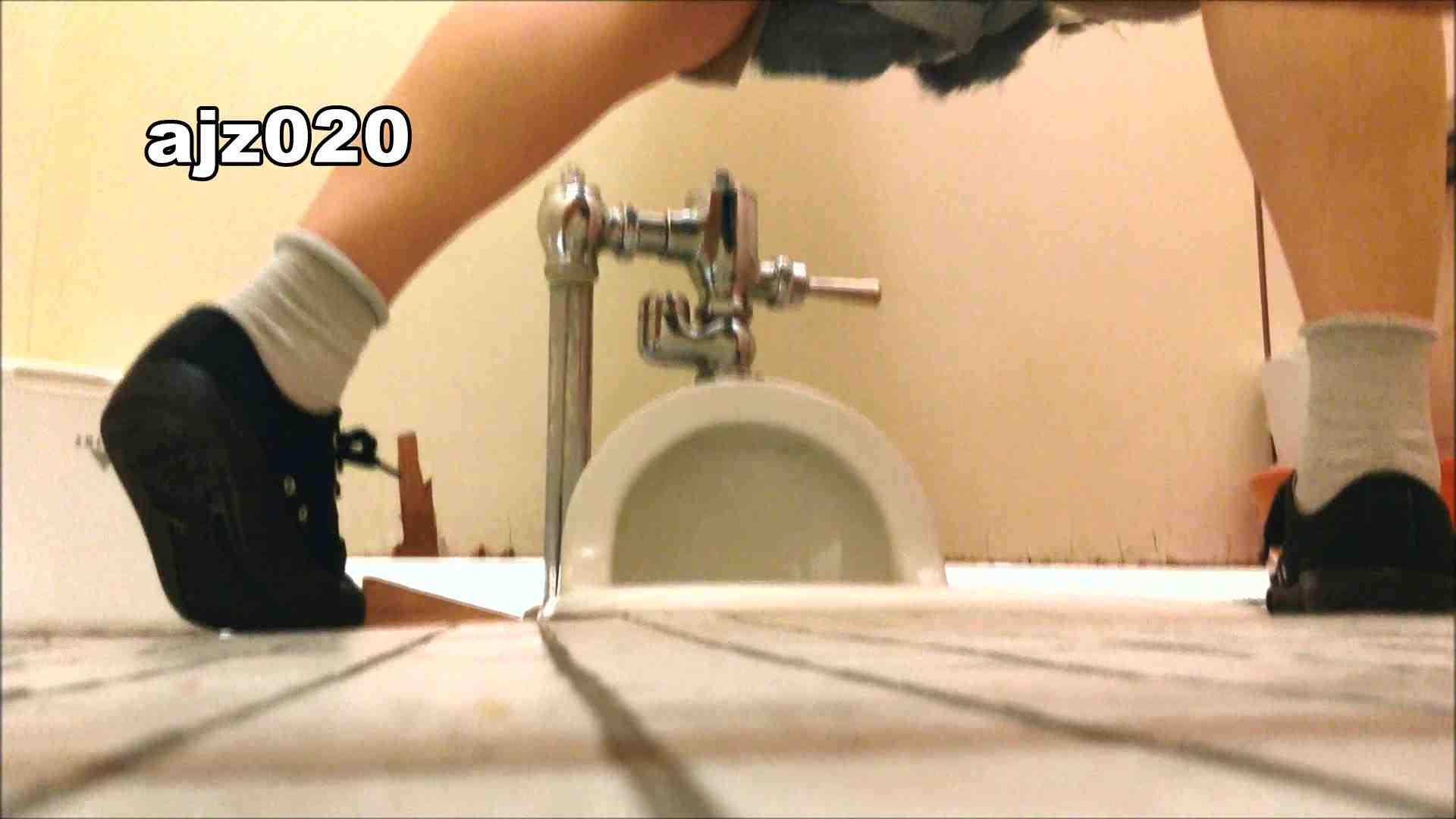 某有名大学女性洗面所 vol.20 洗面所  76PIX 6