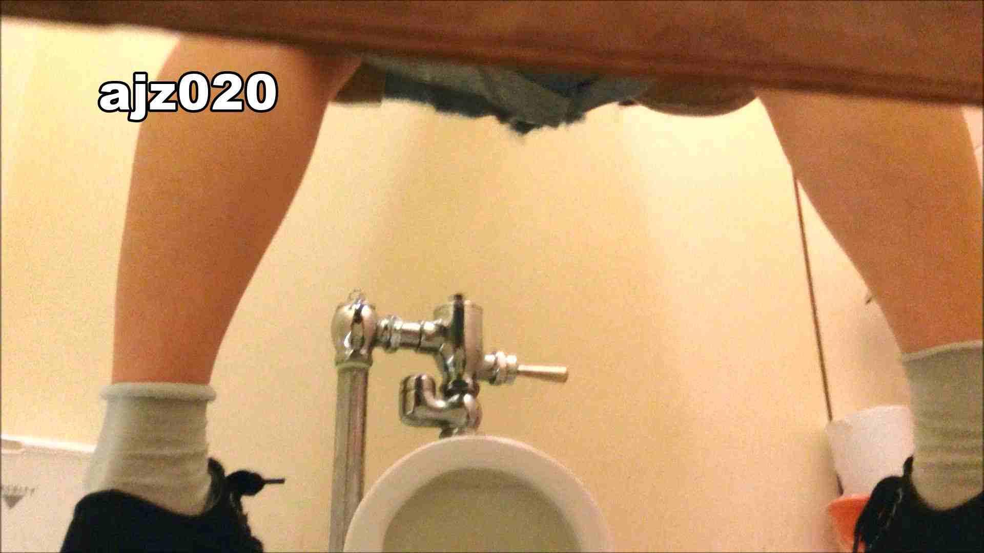 某有名大学女性洗面所 vol.20 洗面所  76PIX 8
