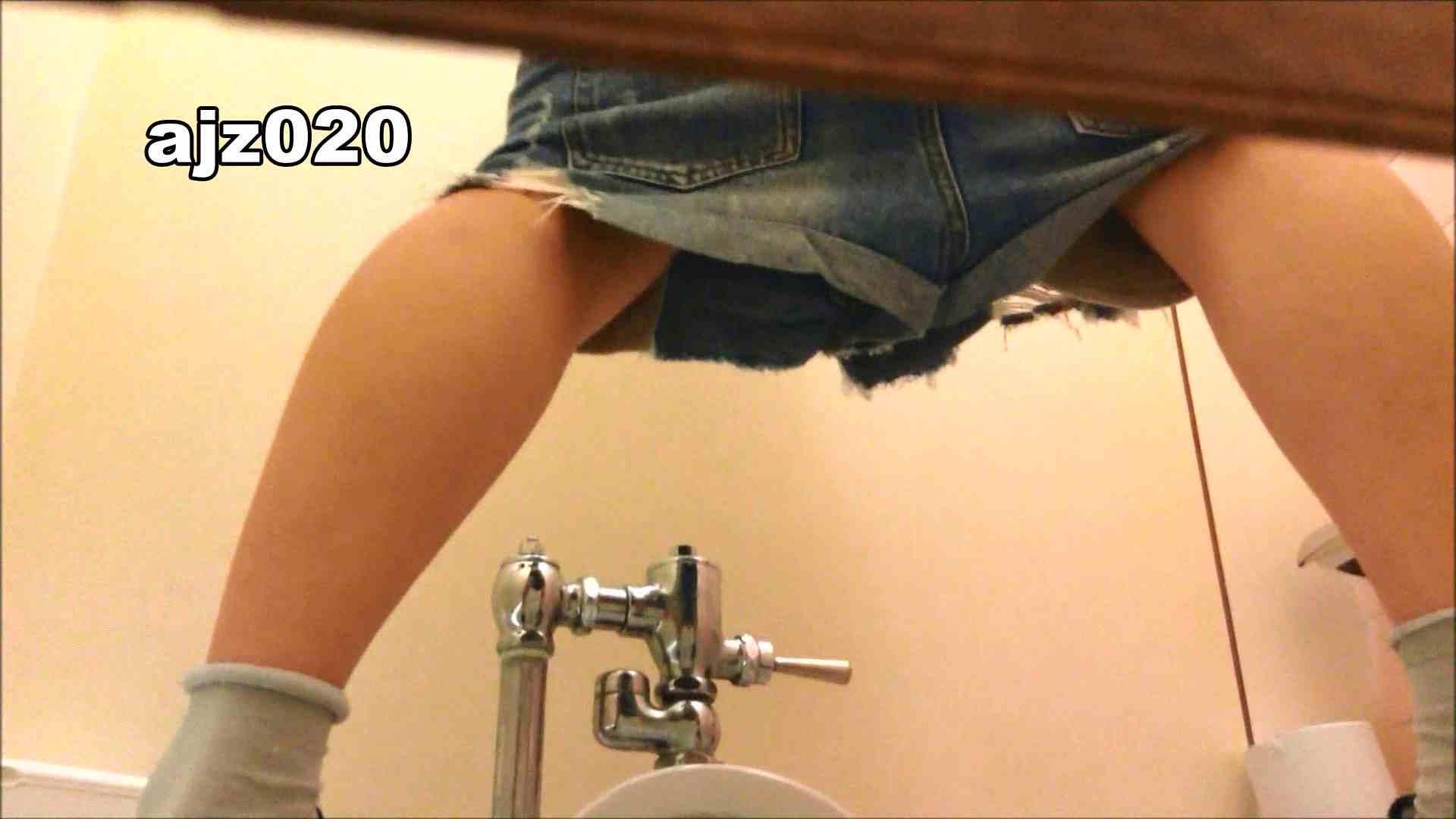 某有名大学女性洗面所 vol.20 洗面所  76PIX 9