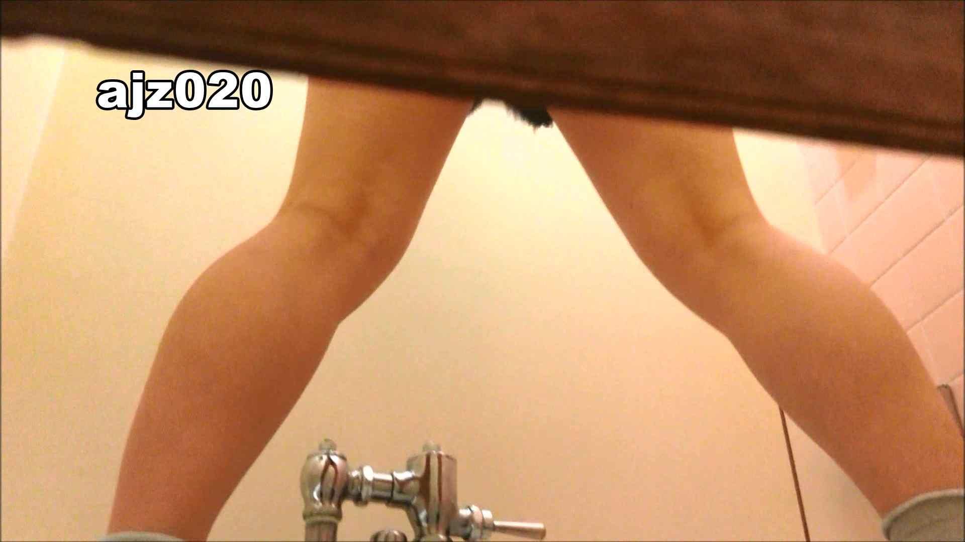 某有名大学女性洗面所 vol.20 洗面所  76PIX 10