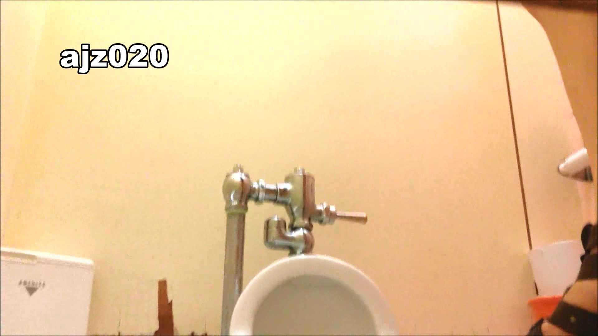 某有名大学女性洗面所 vol.20 洗面所  76PIX 16