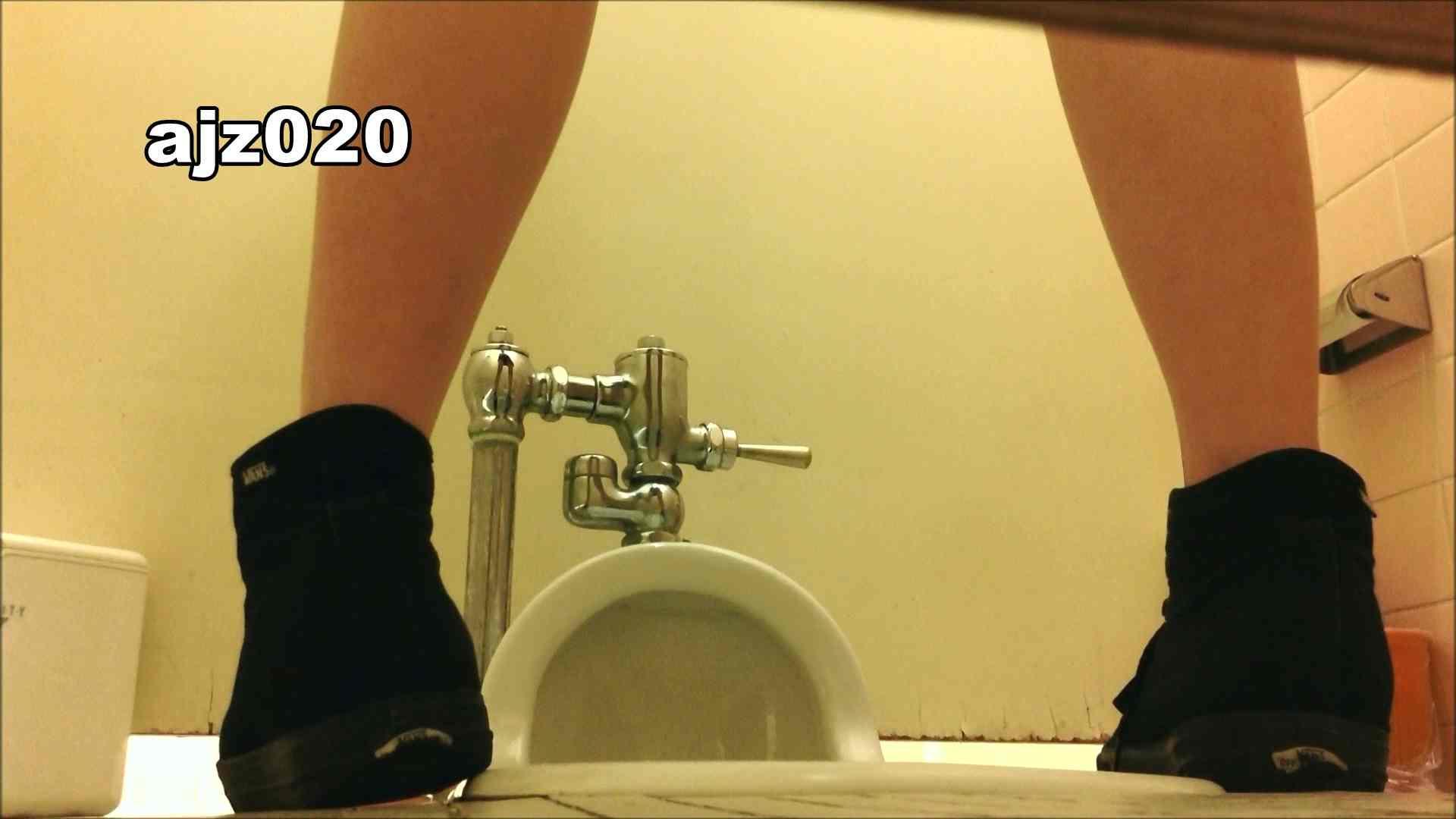 某有名大学女性洗面所 vol.20 洗面所  76PIX 45