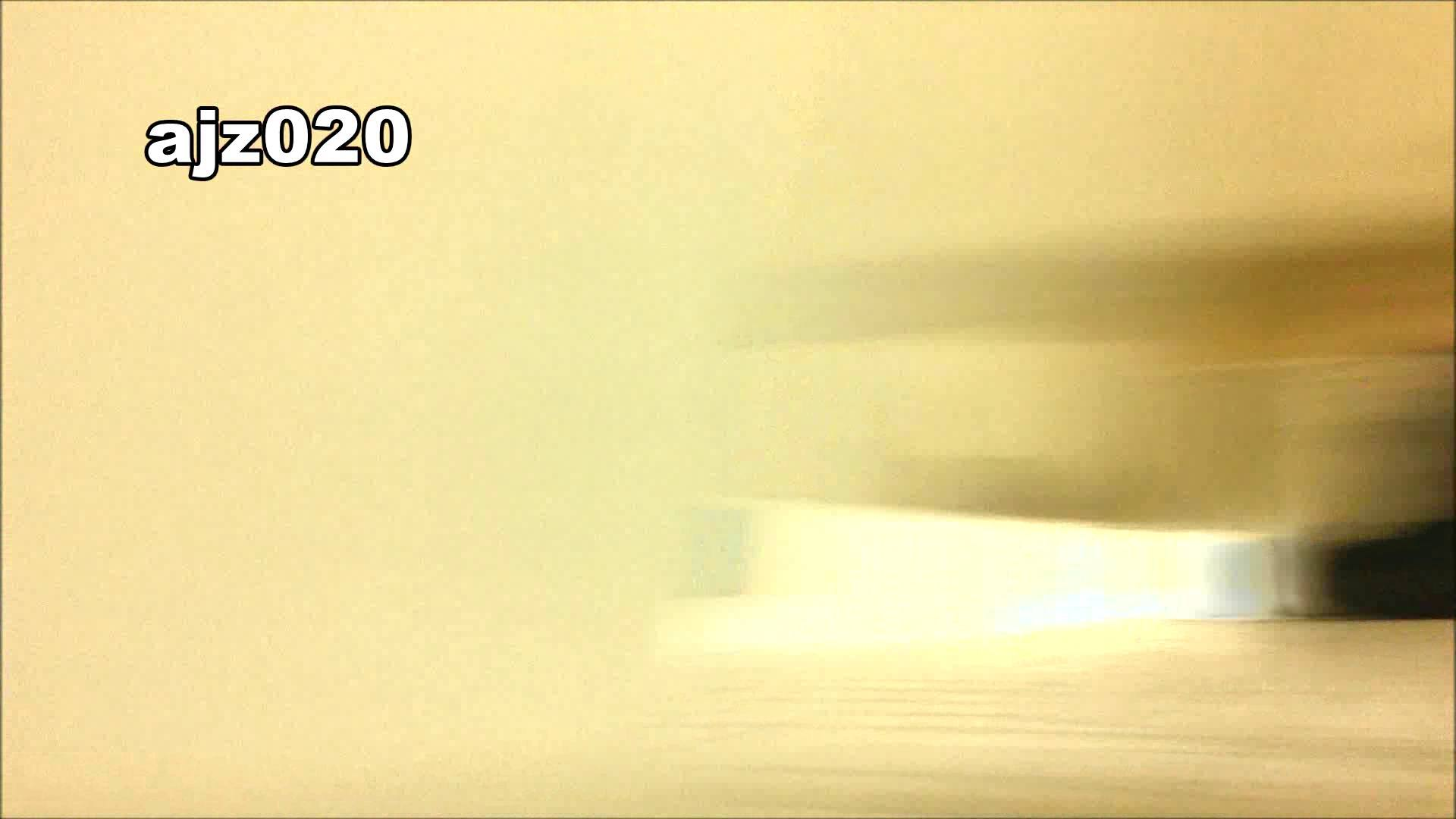 某有名大学女性洗面所 vol.20 洗面所  76PIX 46