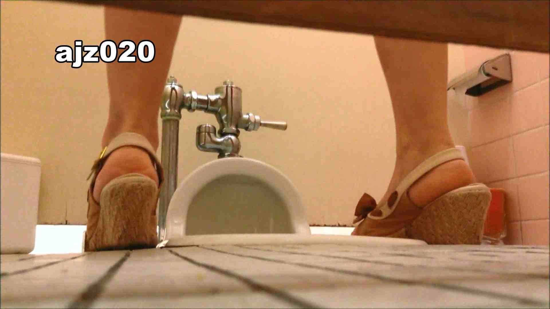 某有名大学女性洗面所 vol.20 洗面所  76PIX 50