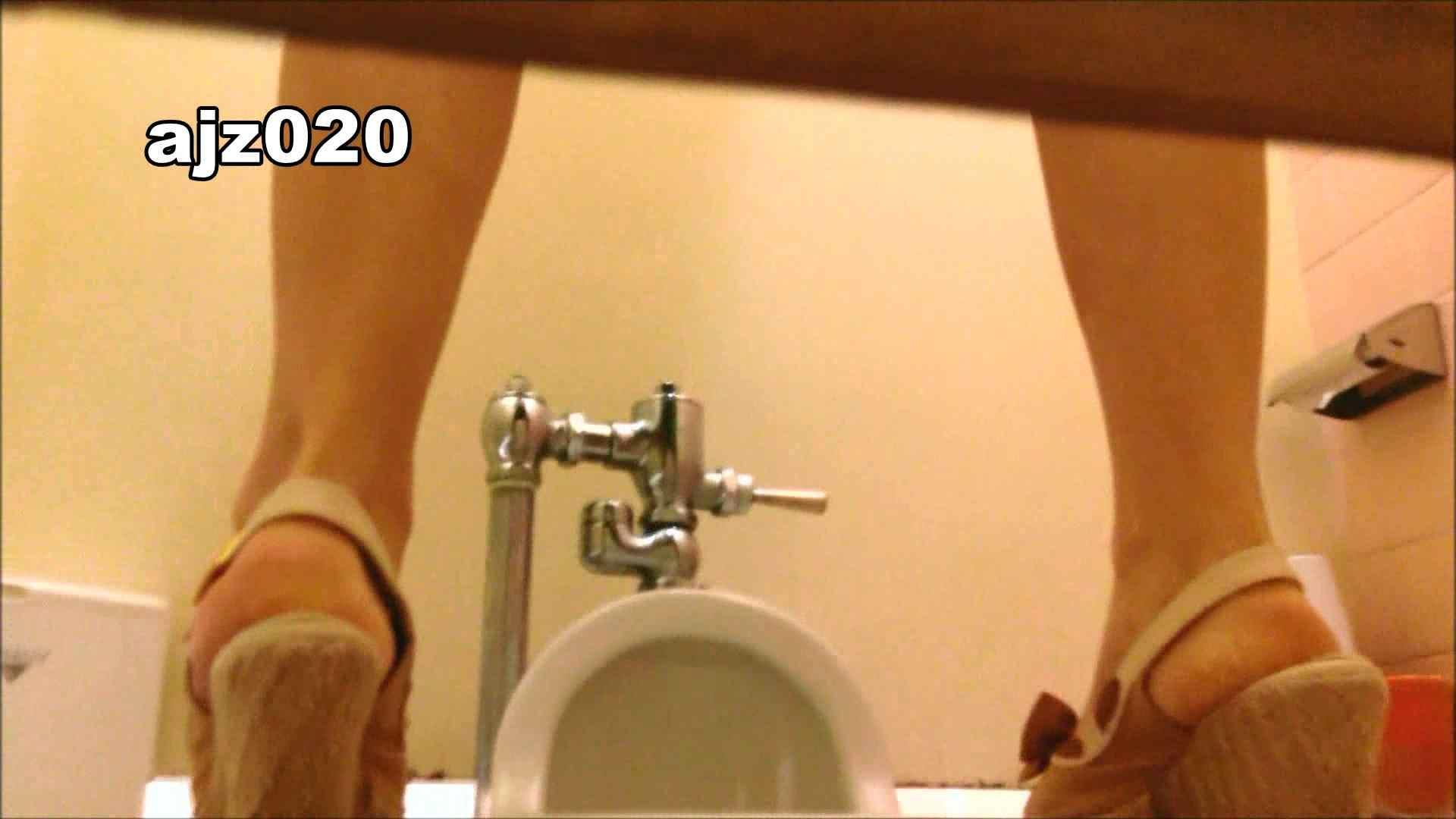 某有名大学女性洗面所 vol.20 洗面所  76PIX 55