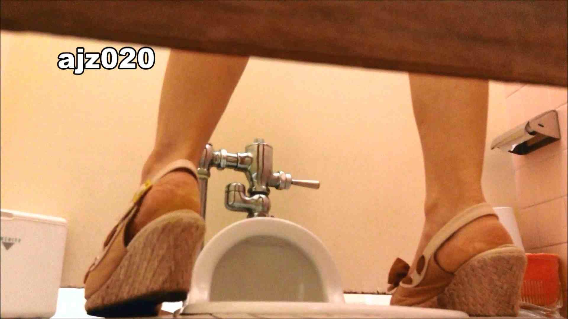 某有名大学女性洗面所 vol.20 洗面所  76PIX 58