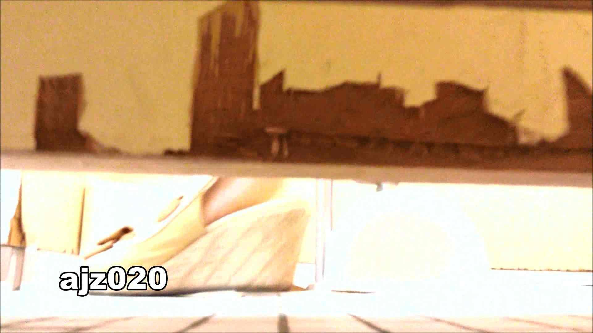 某有名大学女性洗面所 vol.20 洗面所  76PIX 59