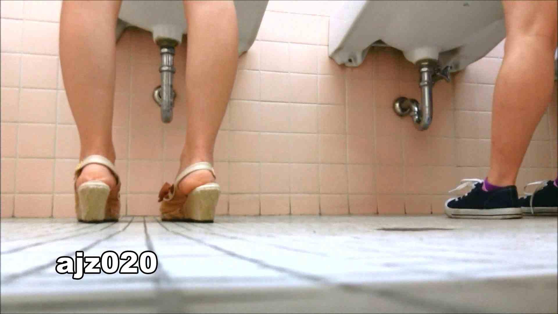某有名大学女性洗面所 vol.20 洗面所  76PIX 61