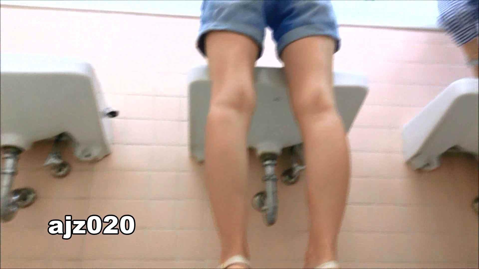 某有名大学女性洗面所 vol.20 洗面所  76PIX 62