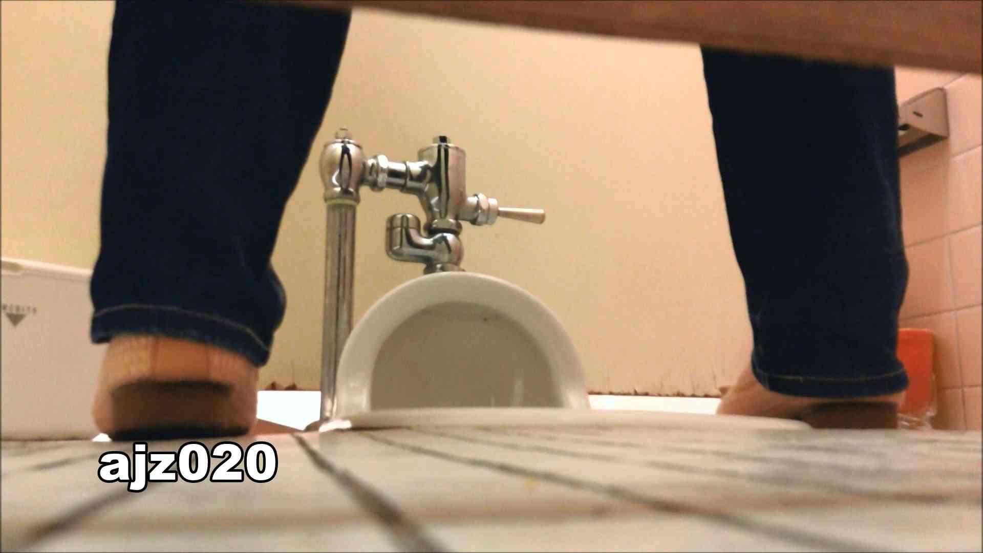 某有名大学女性洗面所 vol.20 洗面所  76PIX 64