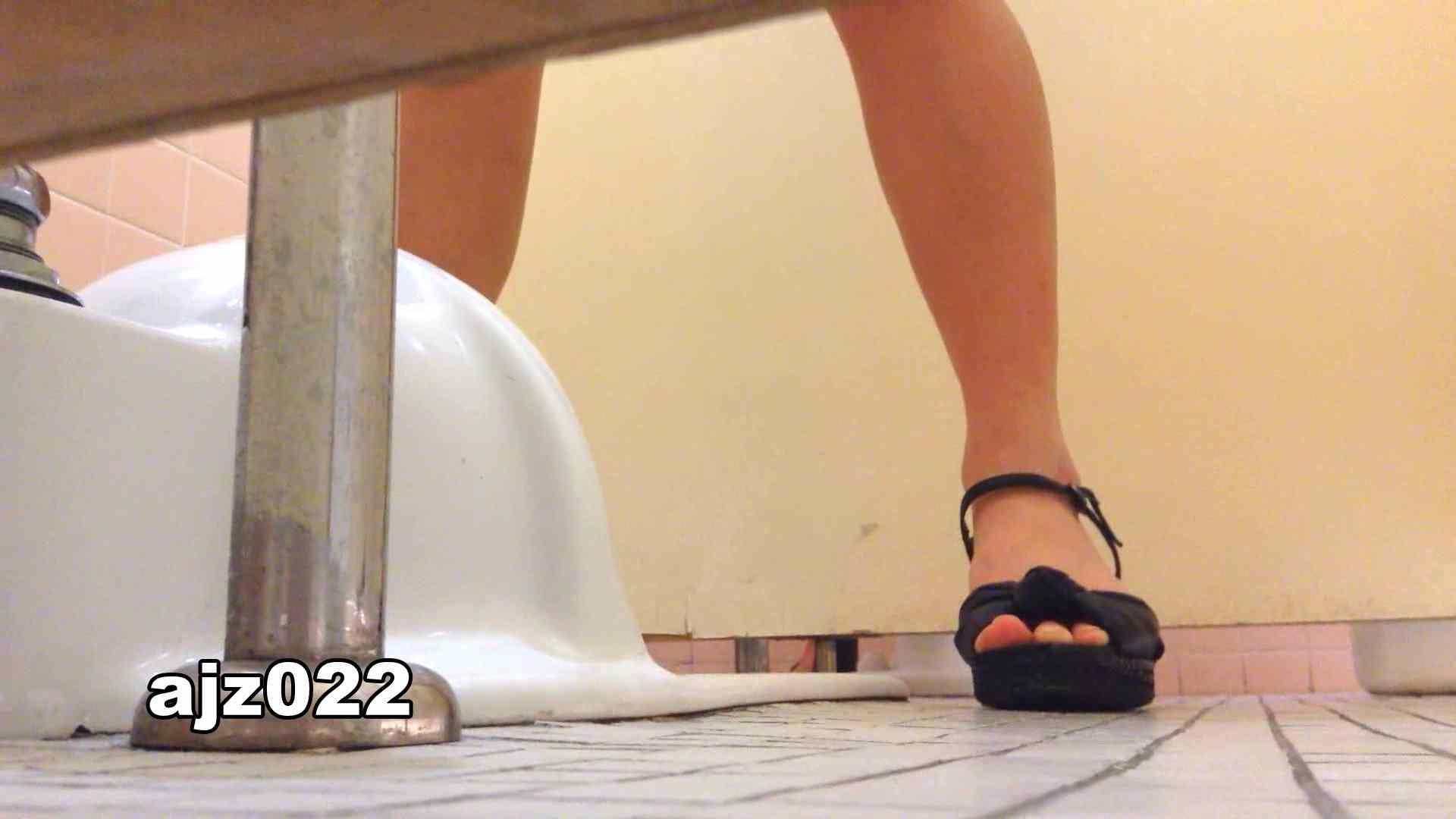 某有名大学女性洗面所 vol.22 排泄  78PIX 22
