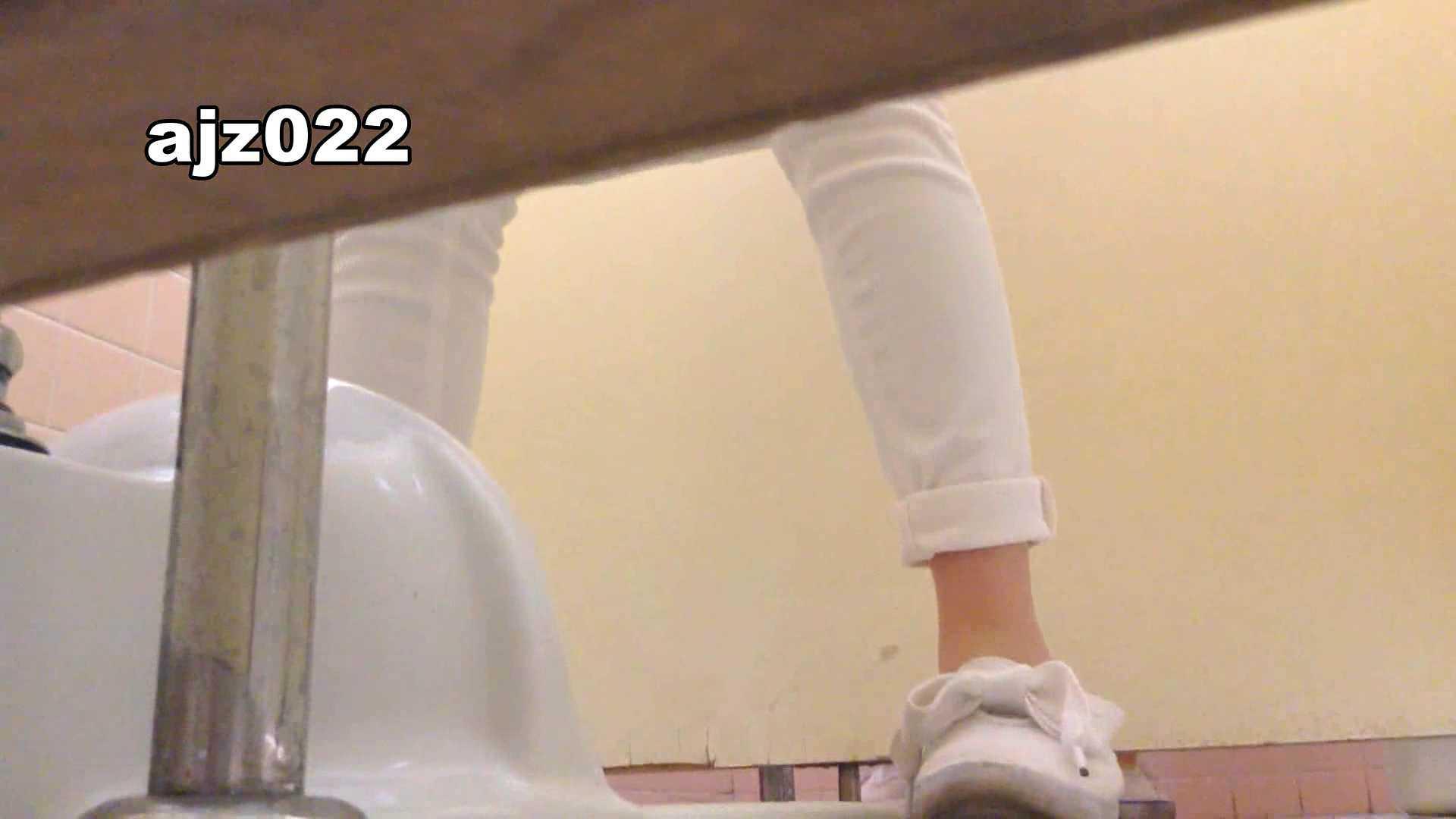 某有名大学女性洗面所 vol.22 排泄  78PIX 37