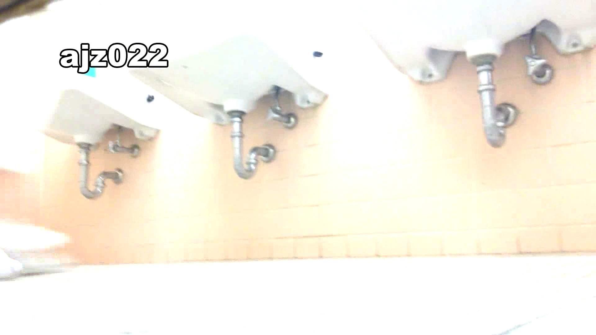 某有名大学女性洗面所 vol.22 排泄  78PIX 39