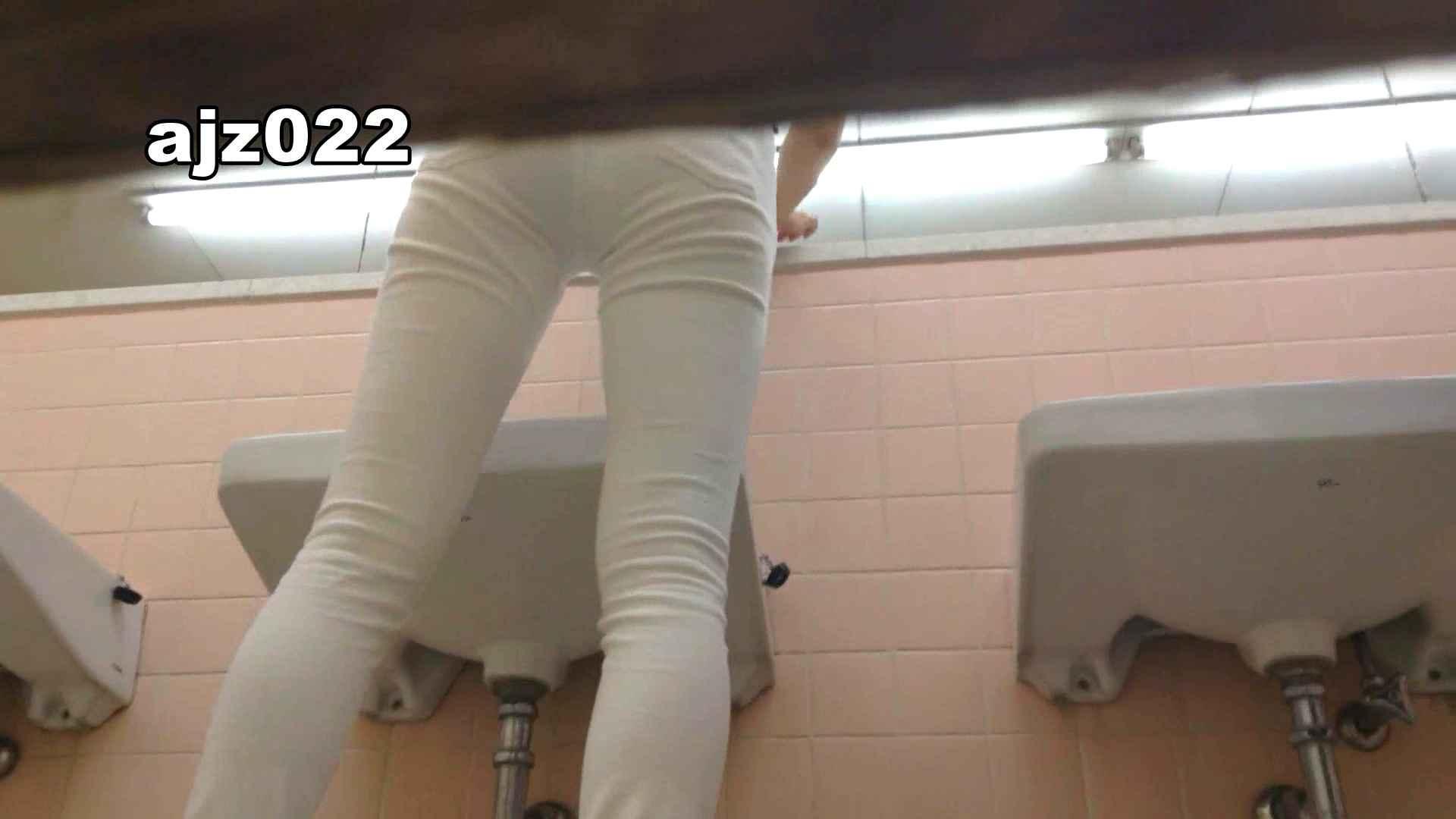 某有名大学女性洗面所 vol.22 排泄  78PIX 40