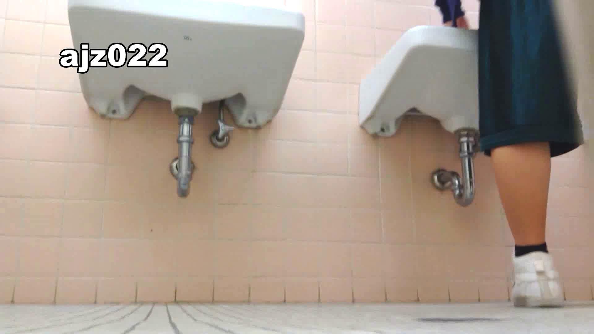 某有名大学女性洗面所 vol.22 排泄  78PIX 49