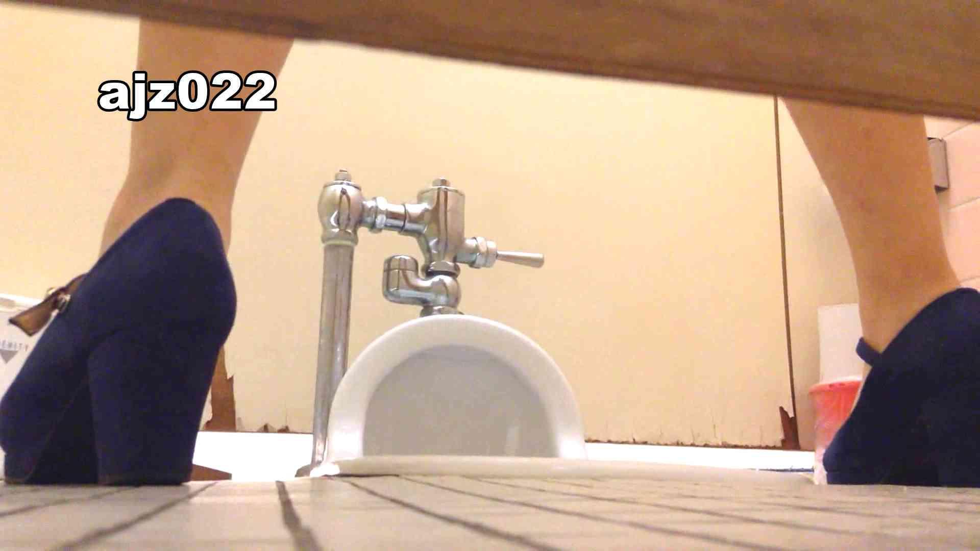 某有名大学女性洗面所 vol.22 排泄  78PIX 50