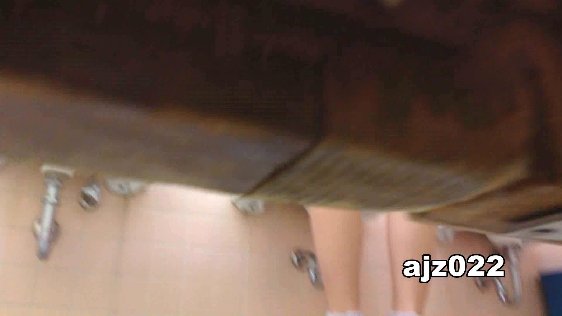 某有名大学女性洗面所 vol.22 排泄  78PIX 78