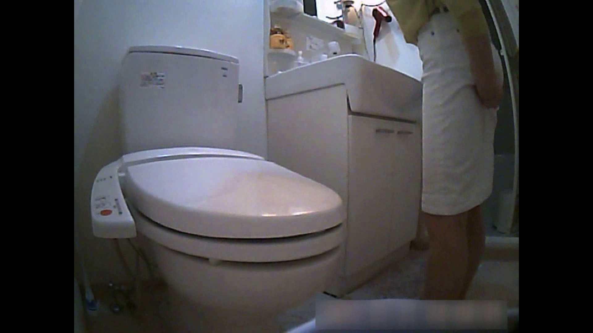 乳首大き目の24歳Y子 トイレ編 細身  76PIX 72