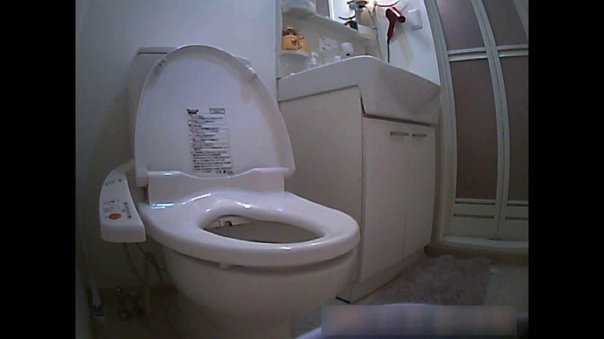 乳首大き目の24歳Y子 お風呂・トイレ編 トイレ  102PIX 1