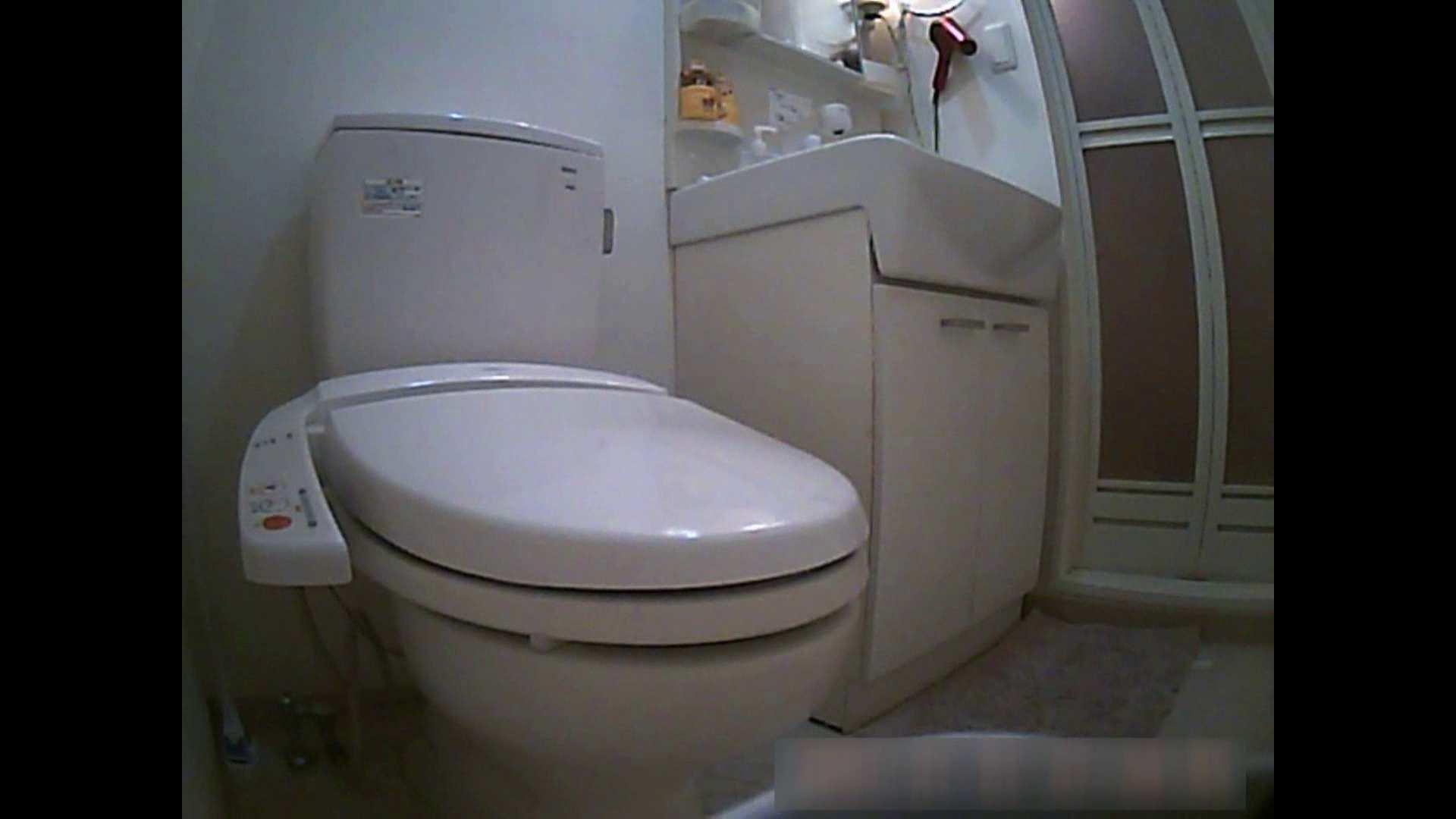 乳首大き目の24歳Y子 お風呂・トイレ編 トイレ  102PIX 65