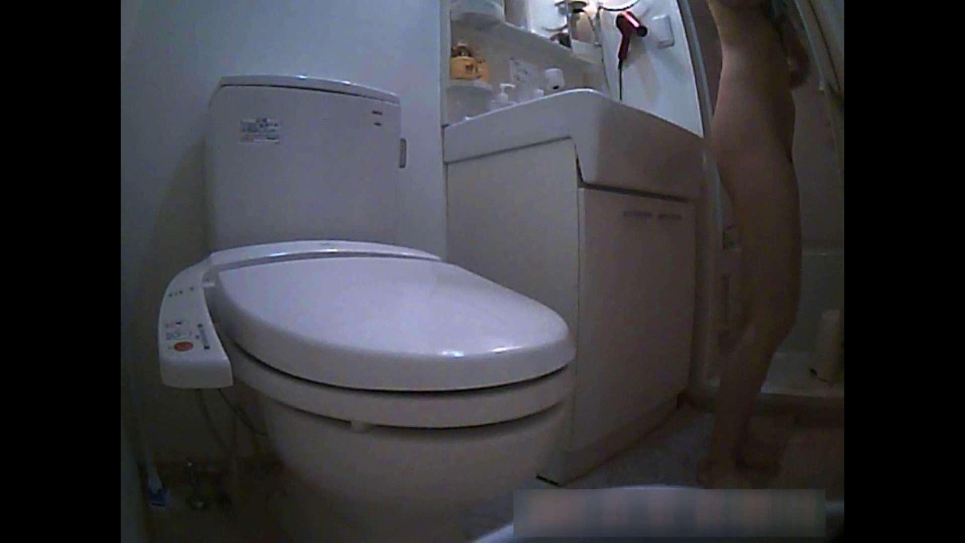 乳首大き目の24歳Y子 お風呂・トイレ編 トイレ  102PIX 95