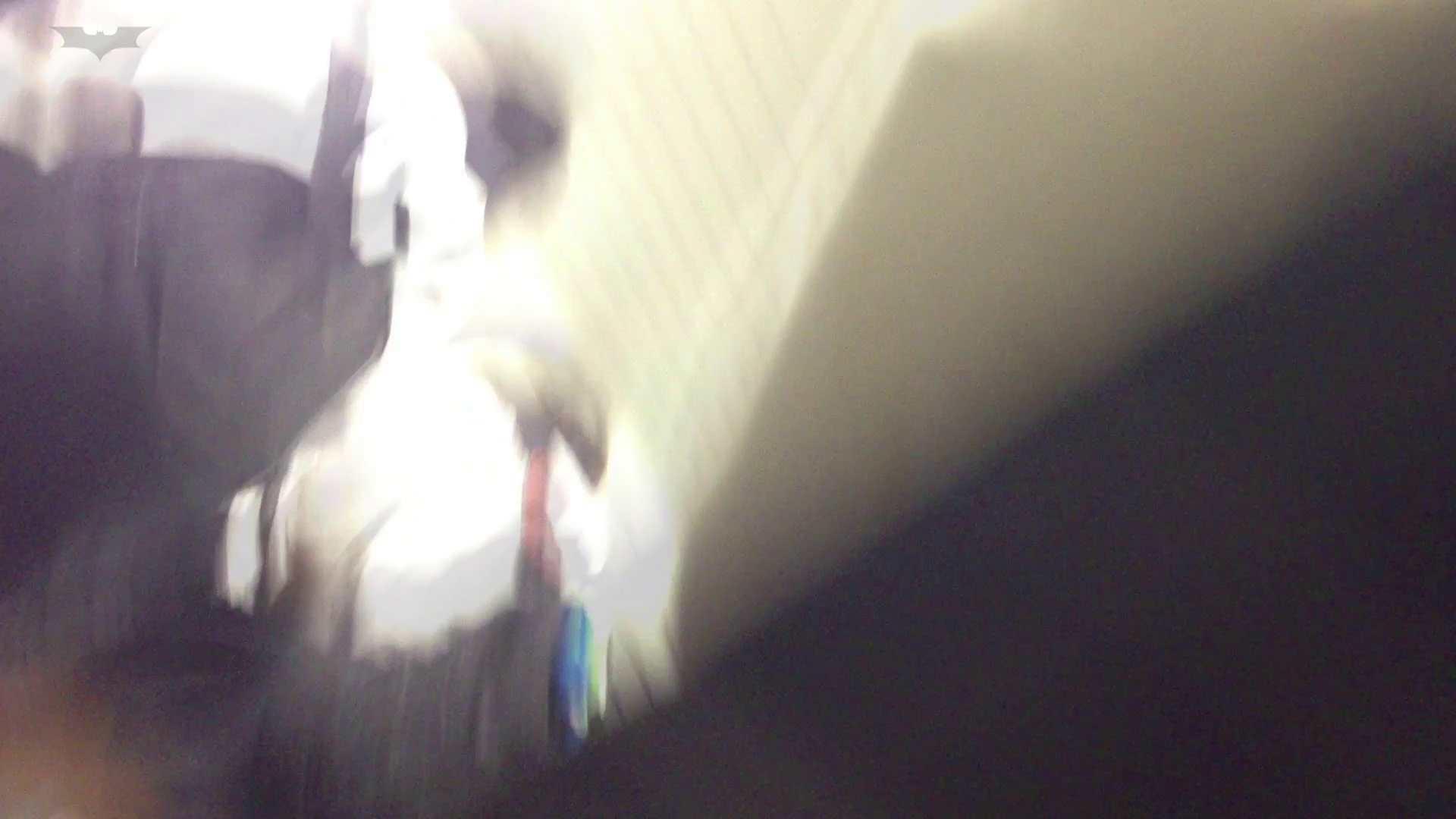 階段パンチラ Vol.04 高画質  81PIX 58