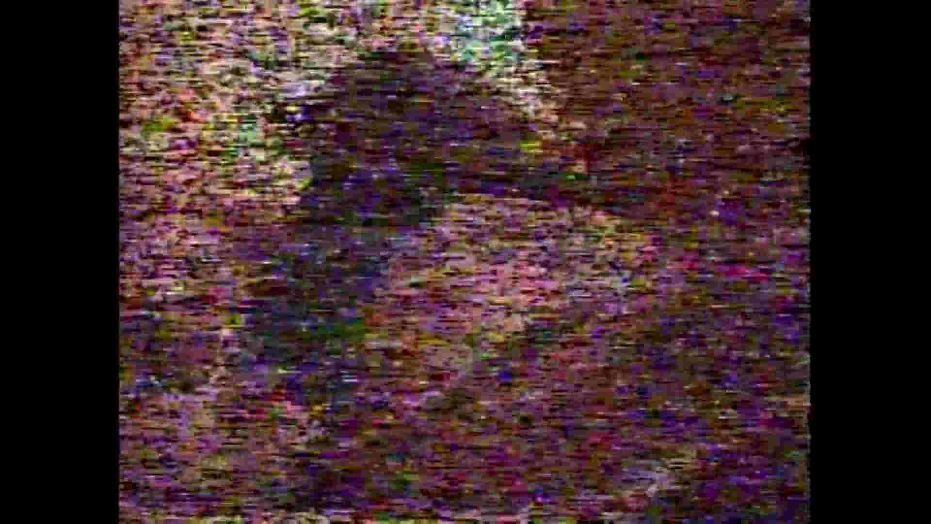 レース場での秘め事 Vol.05 洗面所  66PIX 44