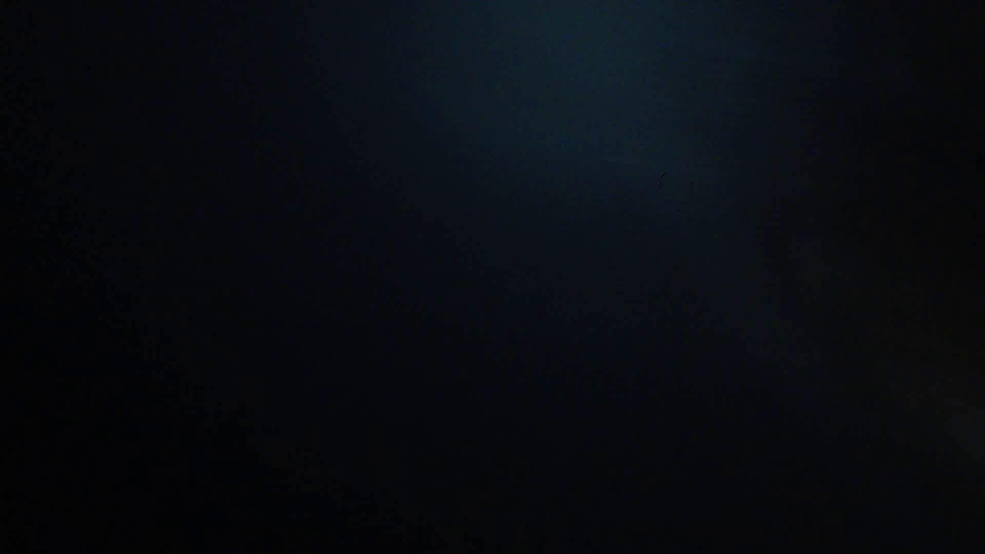 ヒトニアラズvol.7  才 媛 セックス  107PIX 59