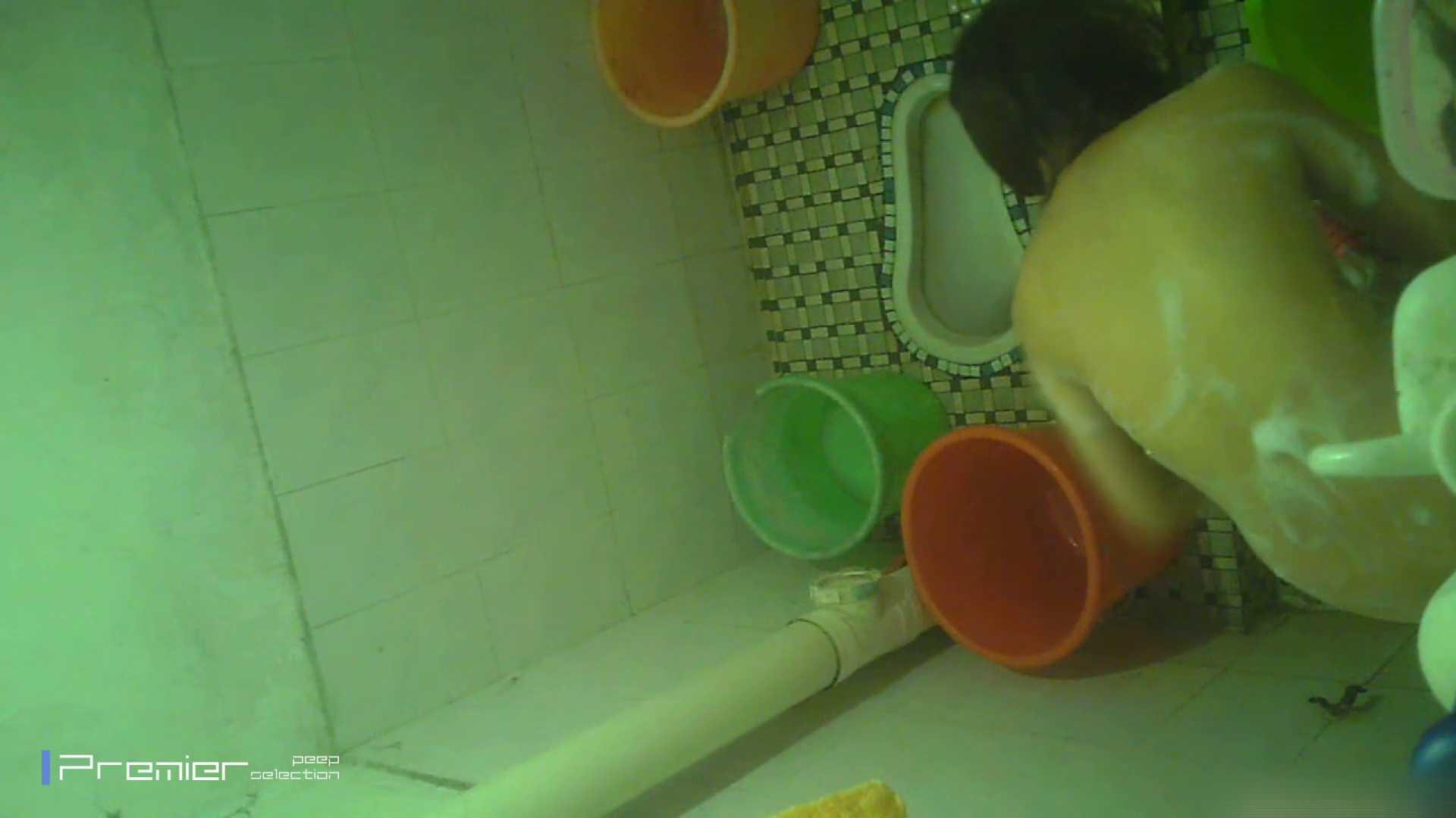 美女の痴態に密着!洗面所で体を洗う!絶世の美女 Vol.06 チラ  91PIX 48