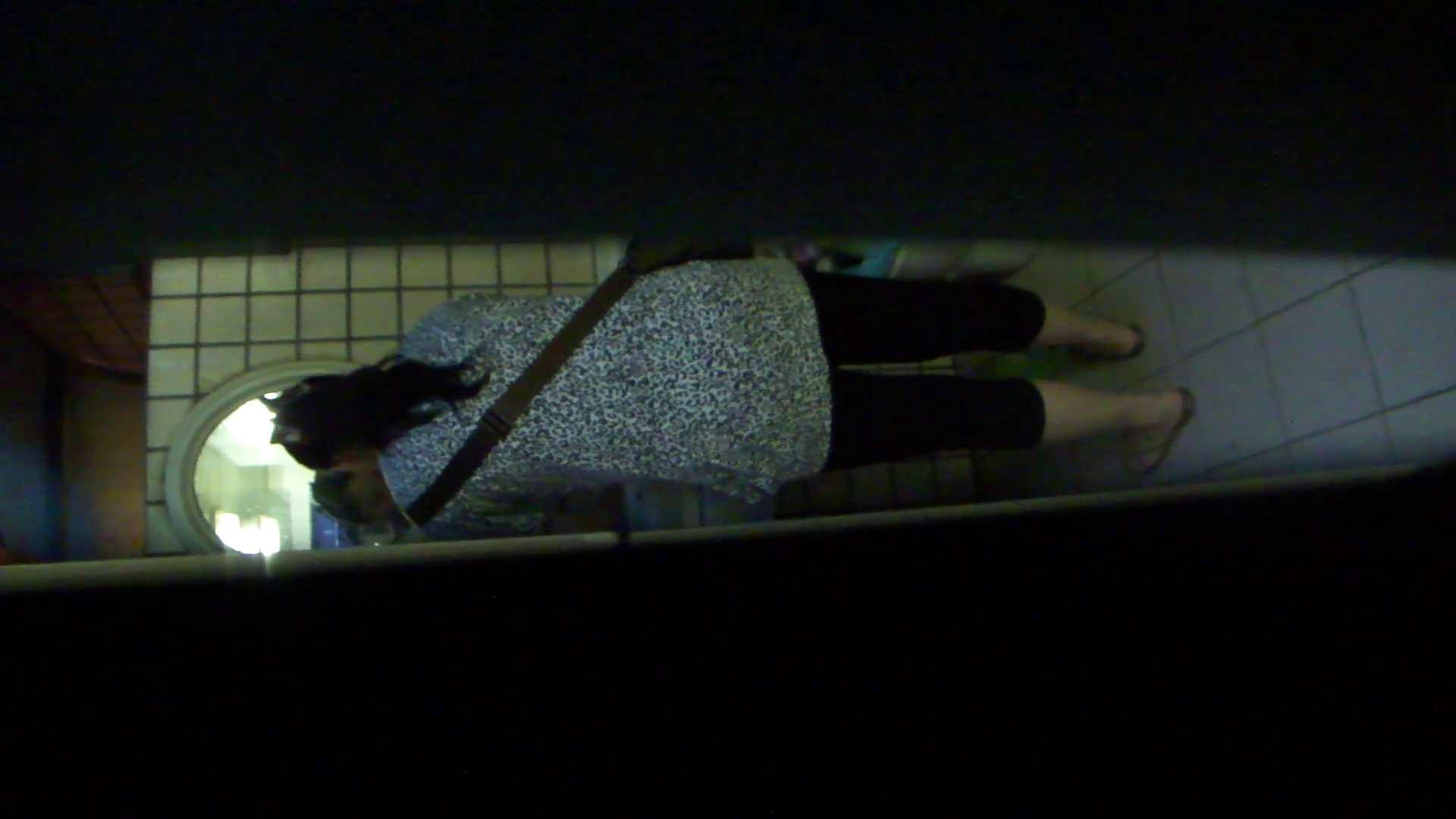ギャルのツルピカ潜入盗撮!Vol.12 洗面所  68PIX 26